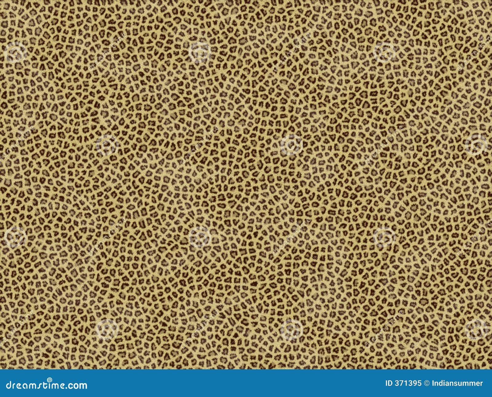 Animal Fur Texture Jaguar Royalty Free Stock Photo