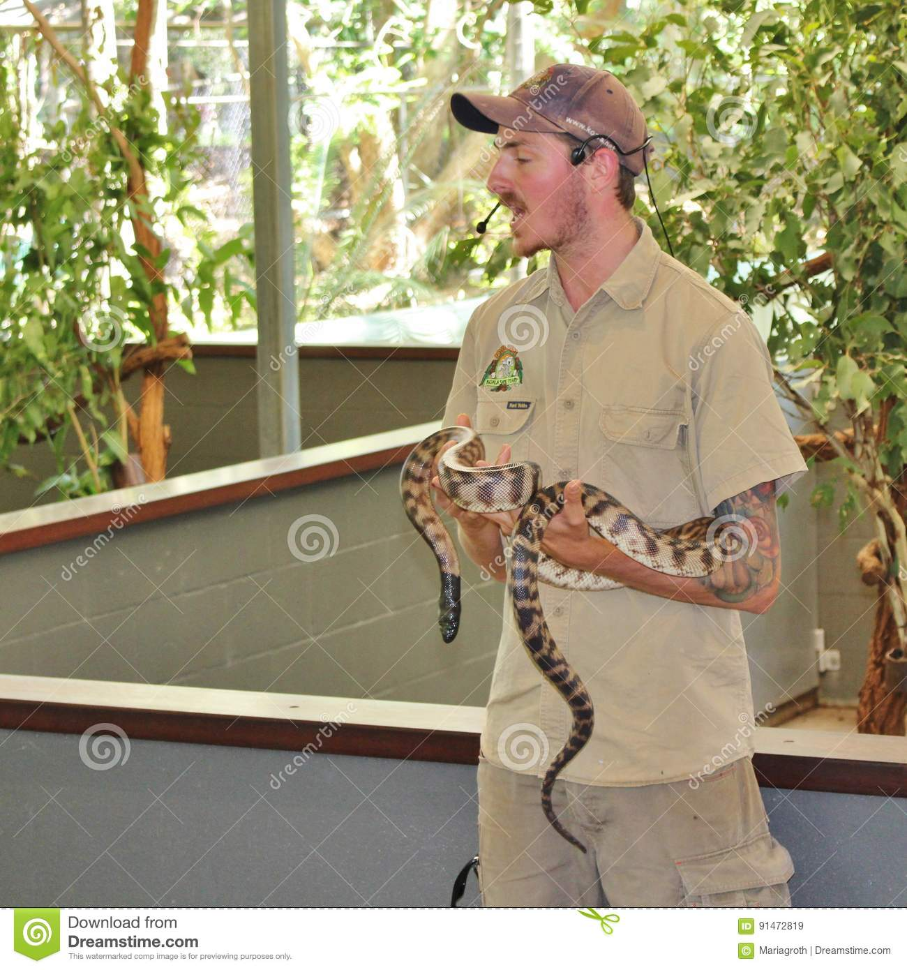 An Animal Keeper With A Python Editorial Stock Image - Image of