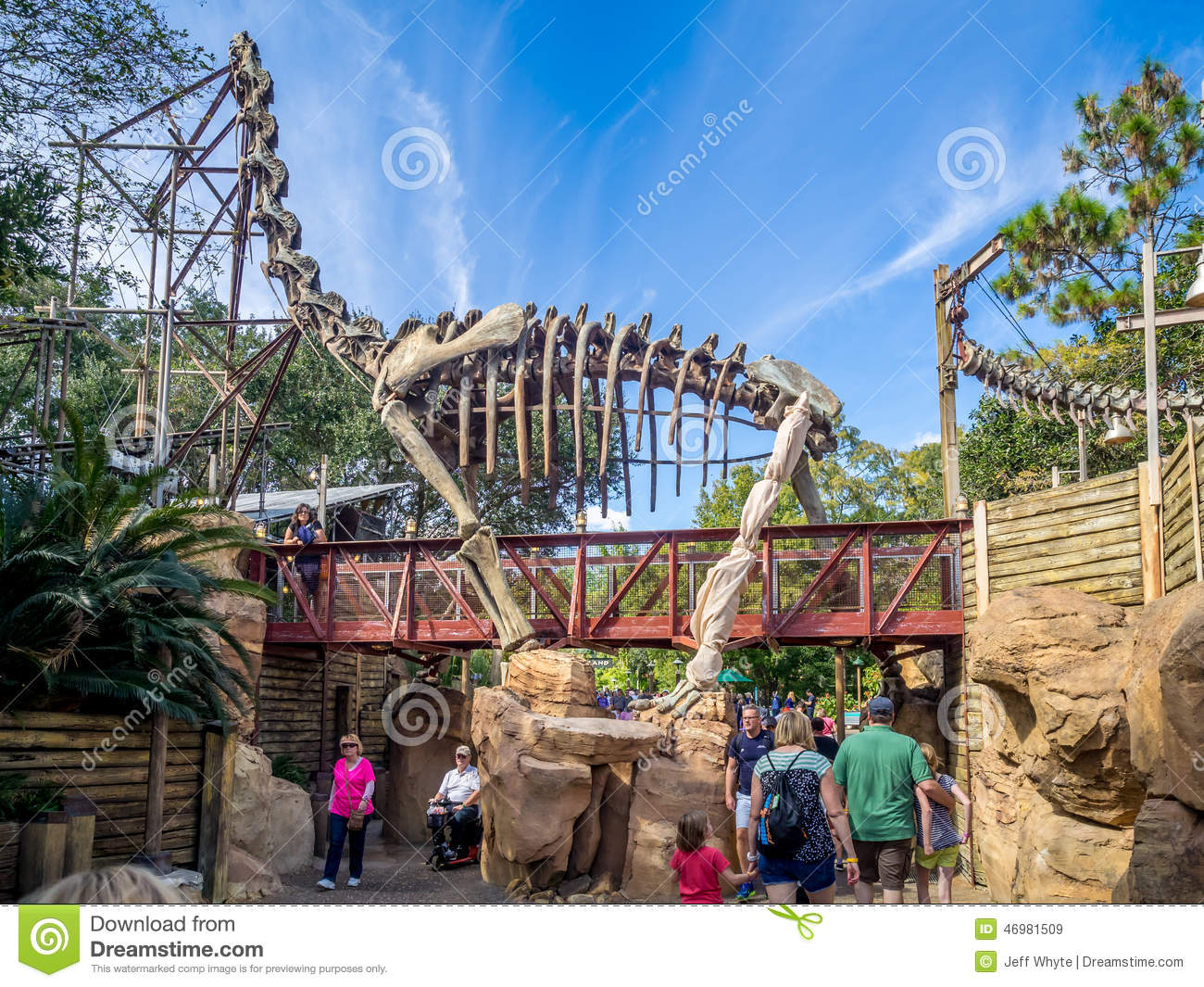 an analysis of the animal kingdom a disney park June 2018 walt disney  magic kingdom park for prices that you can manage with walt disney world coupons and vacation packages our analysis of a year's.