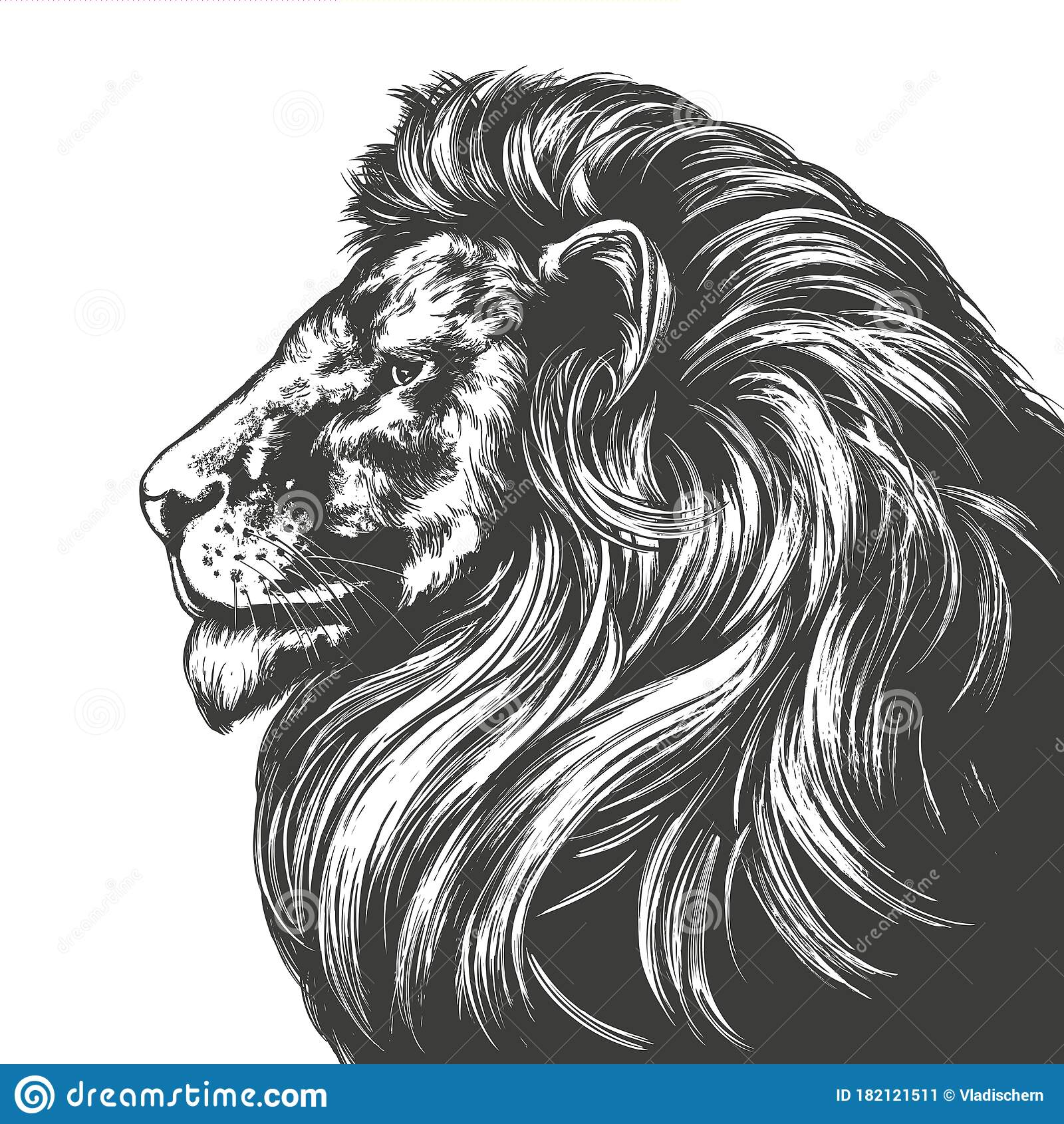 Animal Lion King Of Beasts Hand Drawn Vector Illustration Realistic Sketch Stock Vector Illustration Of Animal Black 182121511 Lion face outlined front free icon. dreamstime com