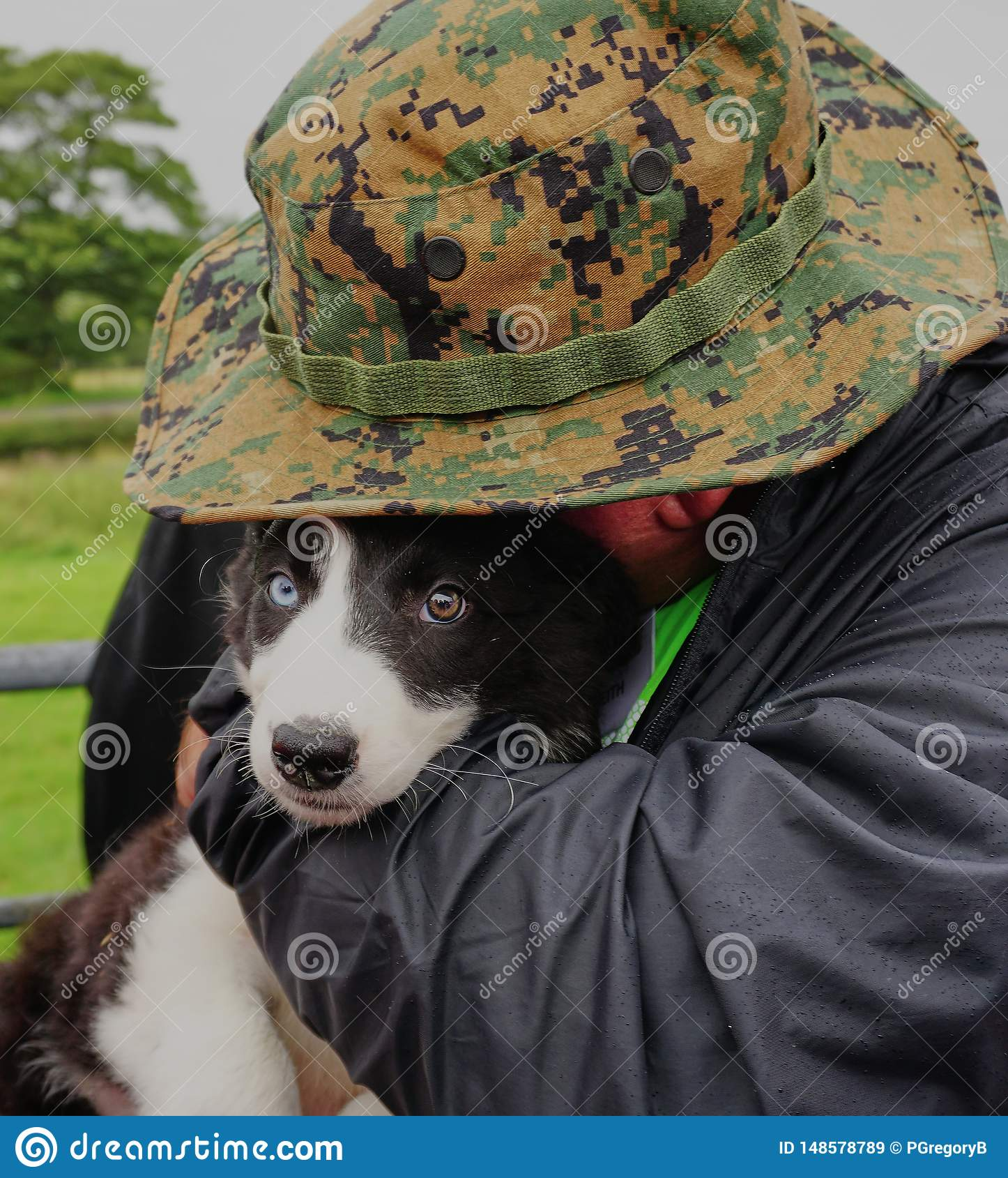 Animal Lover Hugs Beautiful Sheep Dog Puppy - Wales UK.
