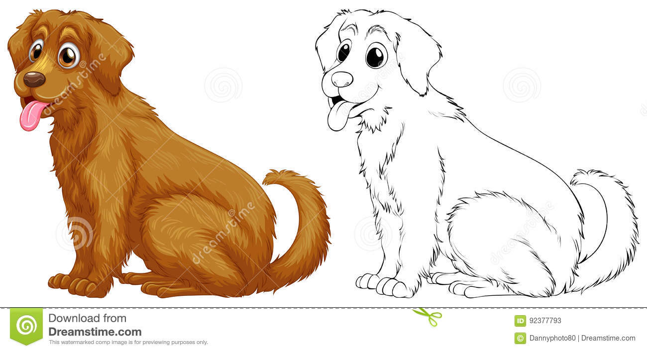 golden retriever dog stock illustrations � 1002 golden