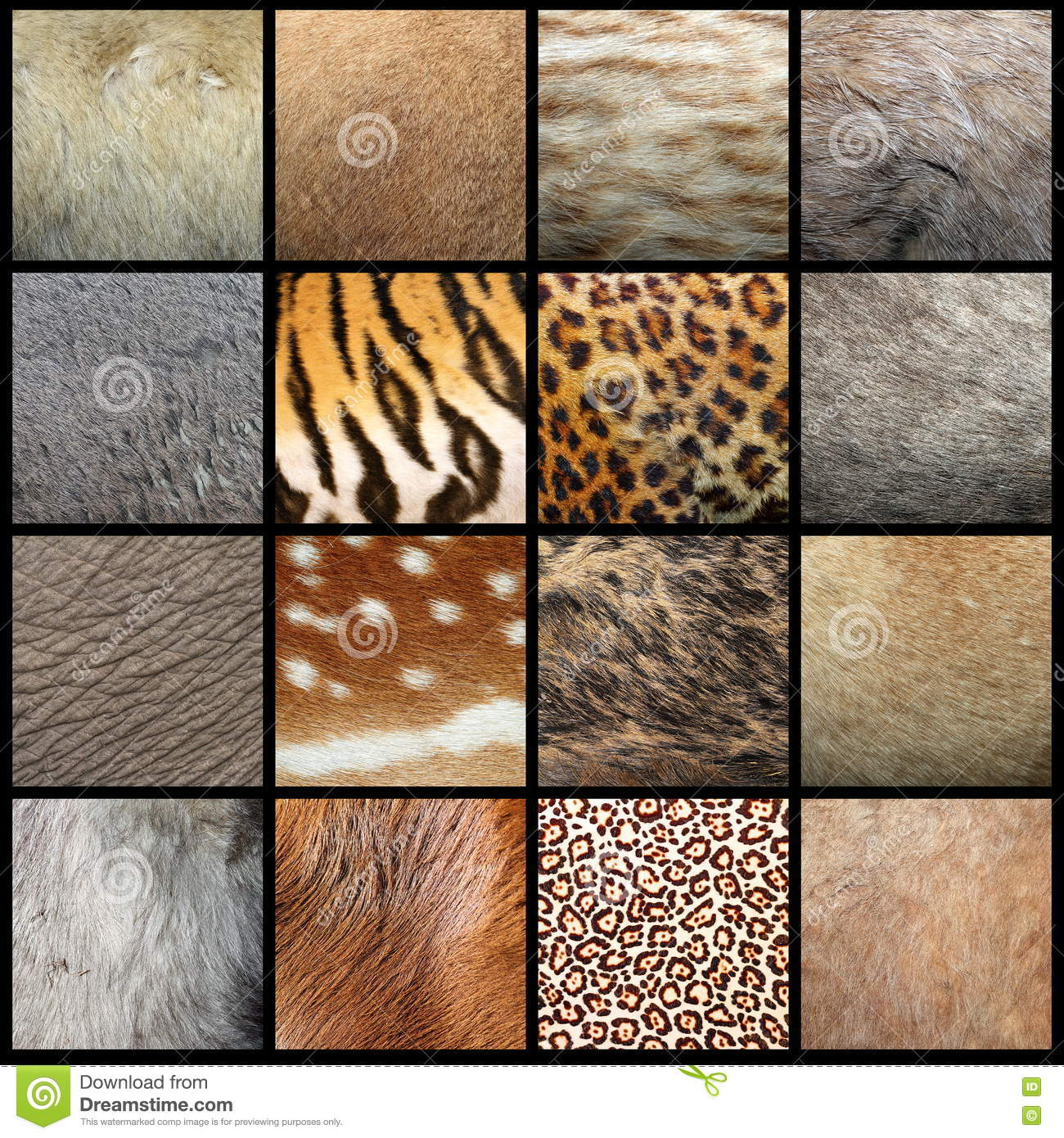 Animal pelts collection