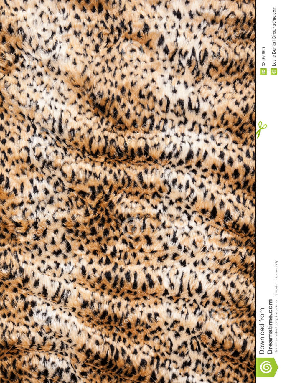 Animal Print Blanket Stock Photo Image Of Blanket Leopard 33455950