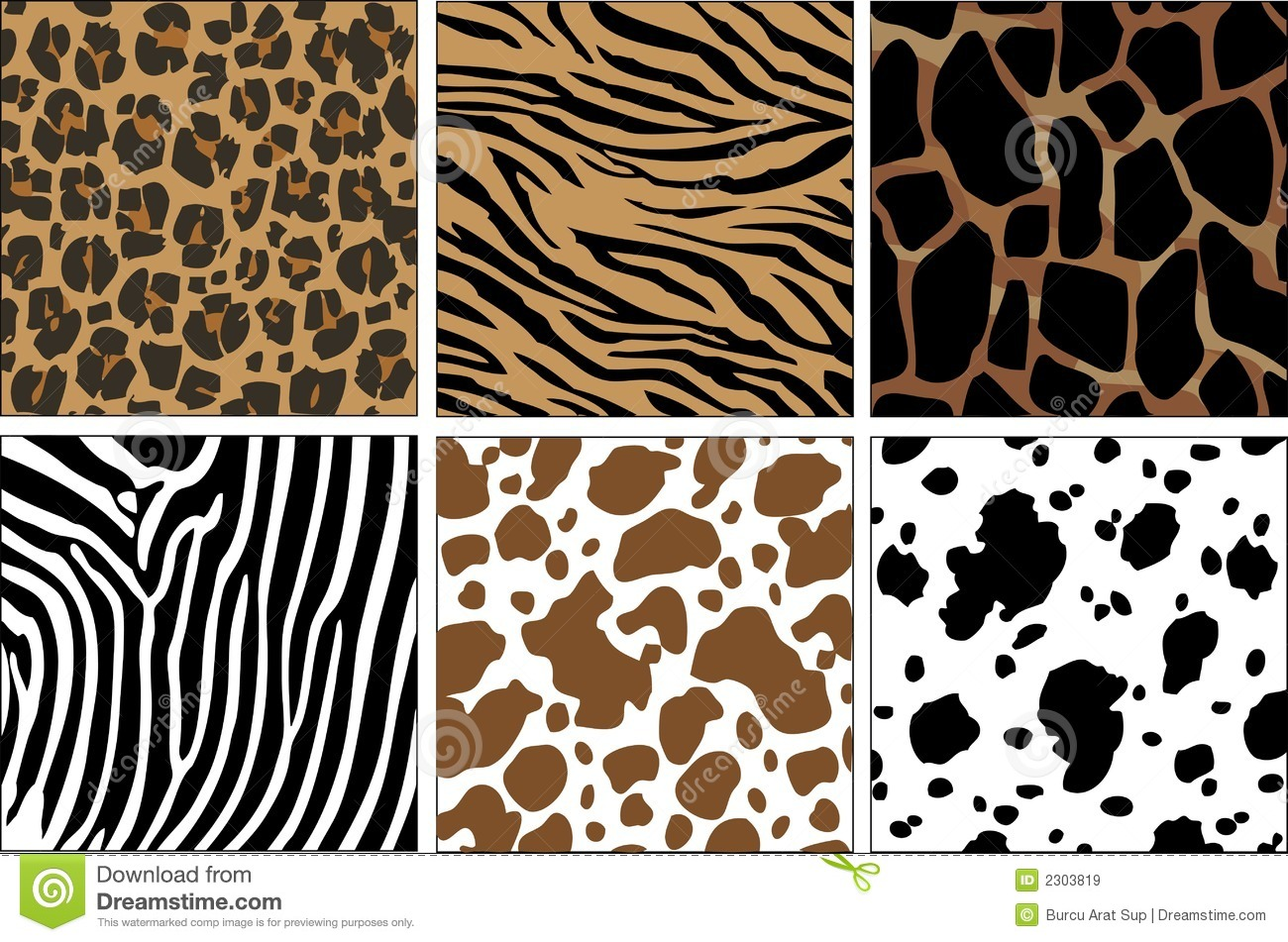 Illustration of animal skin textures, background patterns.
