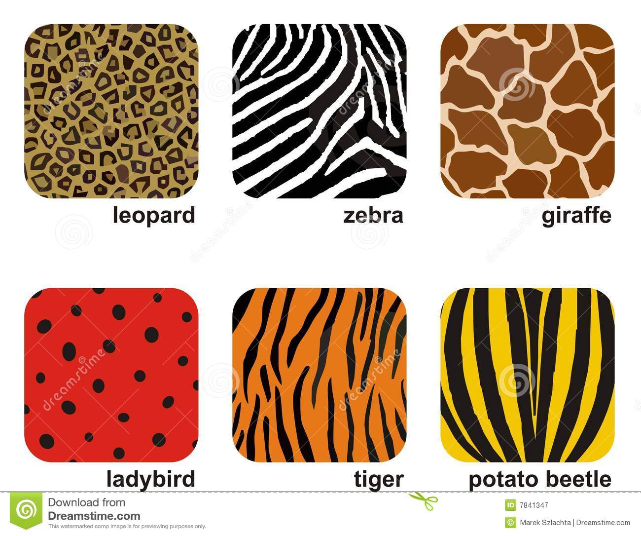 Animal Prints Royalty Free Stock Photography - Image: 7841347