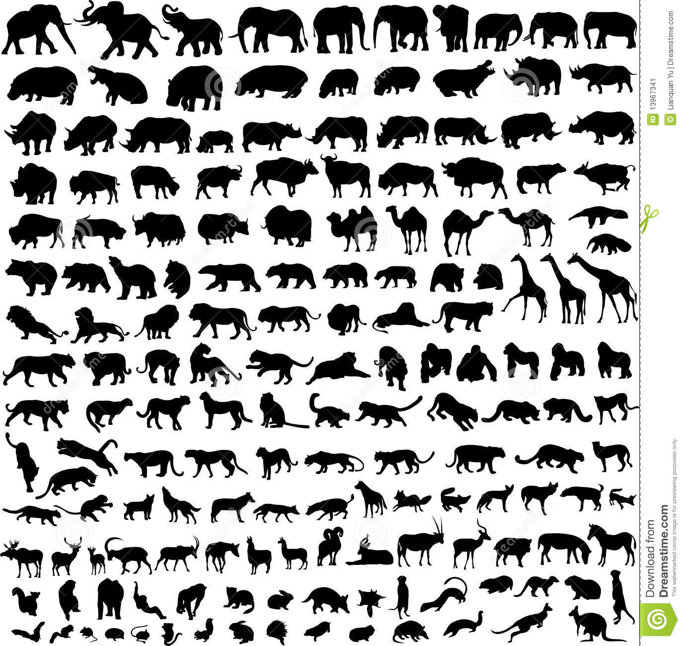 Snapshots of the most comprehensive collection of mammals.