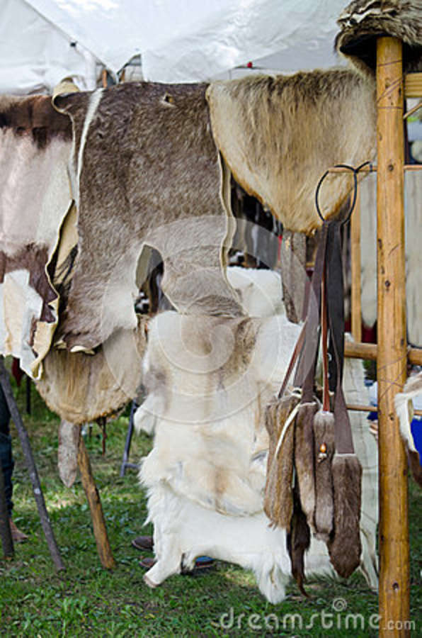 Animal skins and pelts for sale