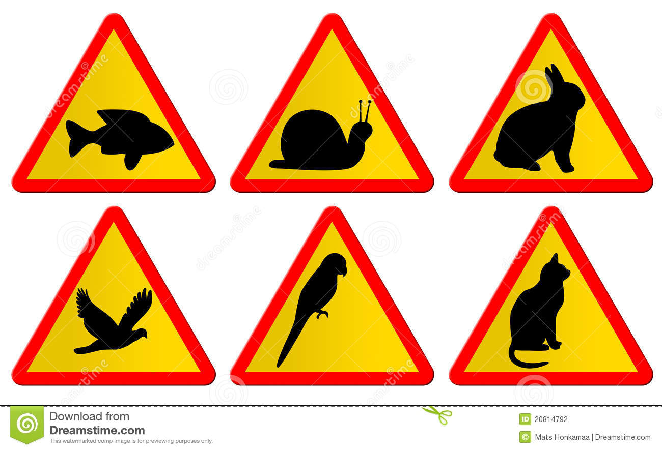 signs animal traffic animals warning parrot different preview dreamstime