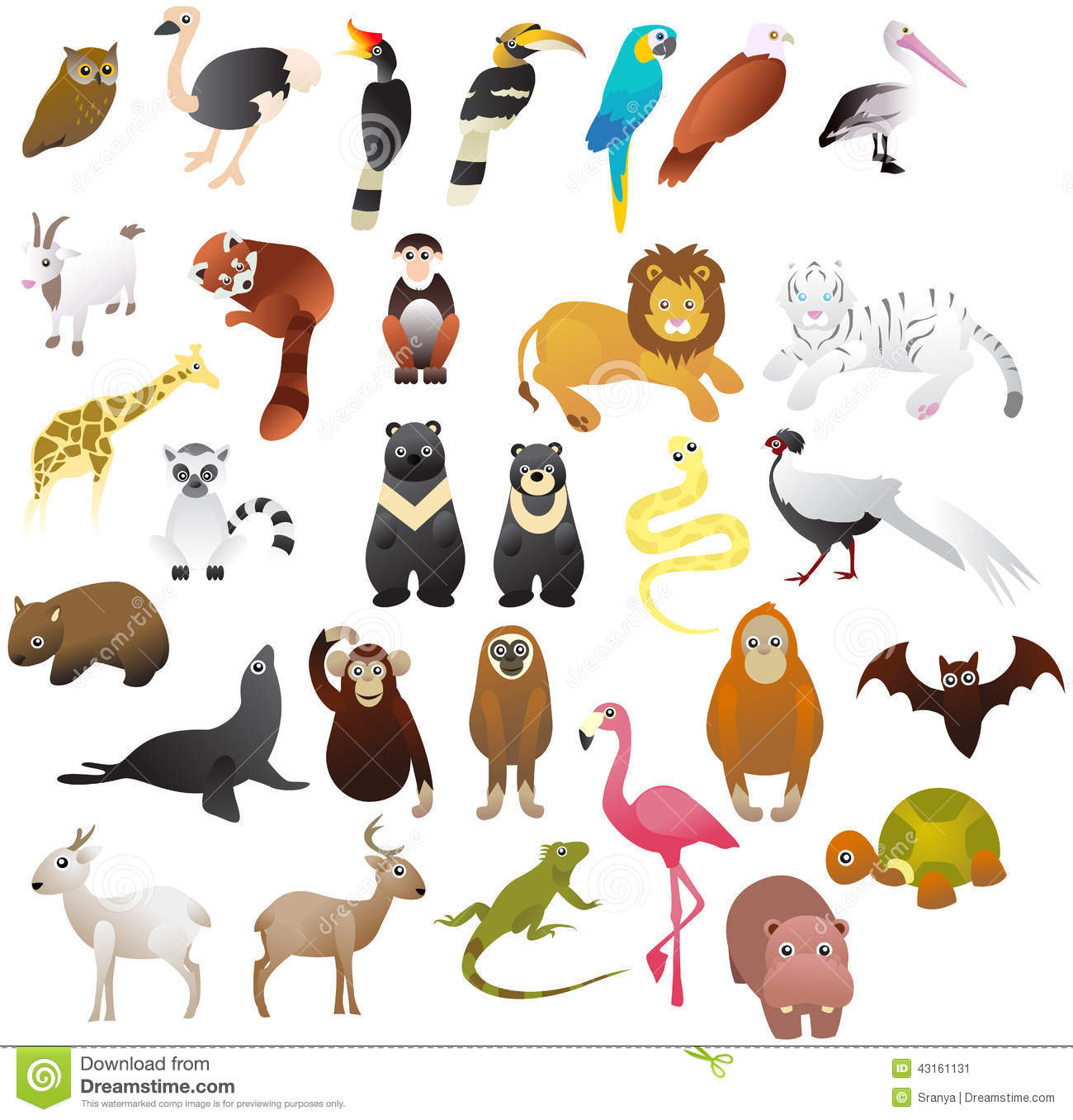 Animal In The Zoo Stock Vector Image 43161131