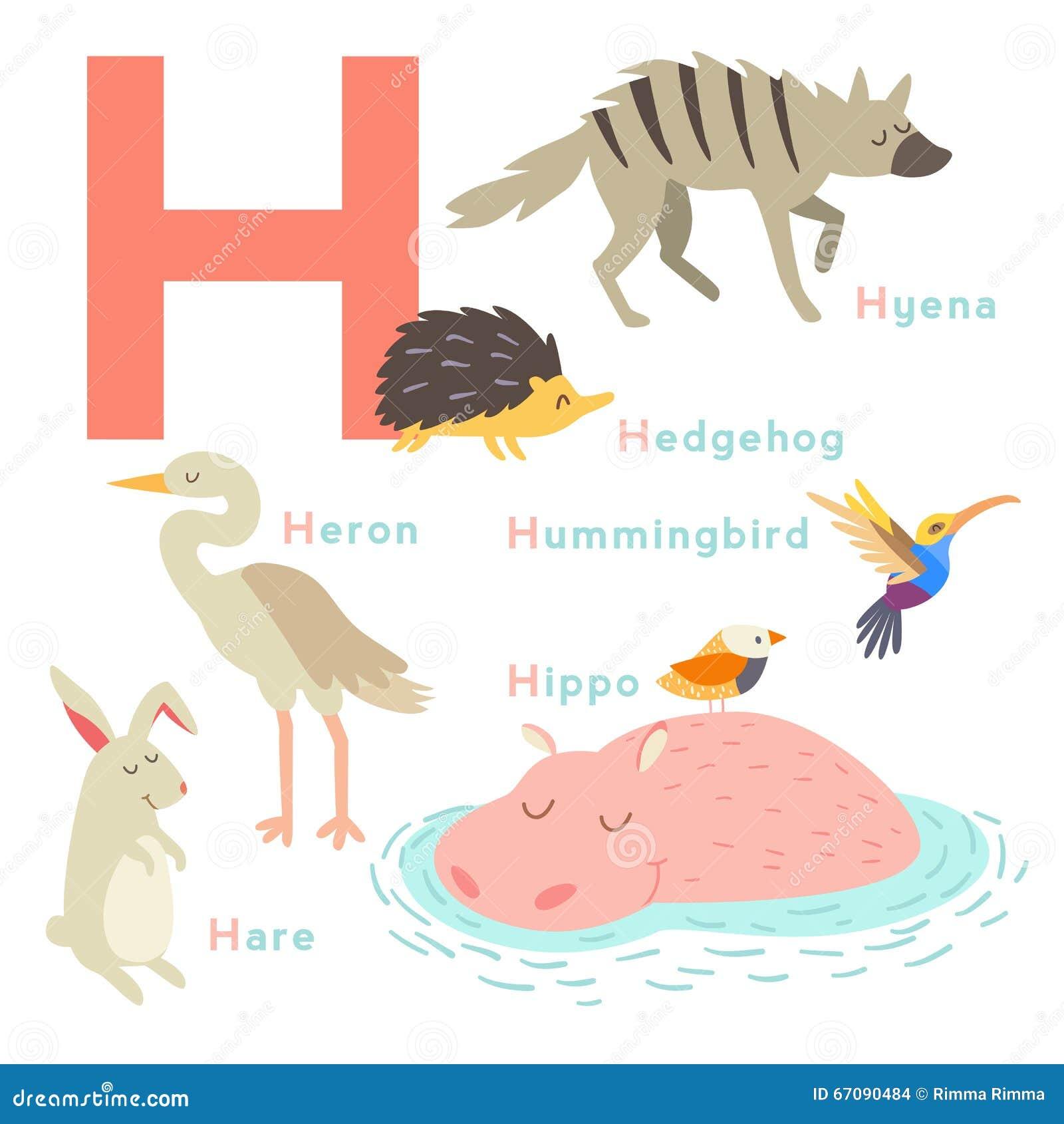 ¿Estás buscando nombres de animales con la letra H? Esta es sin lugar a dudas una excelente idea pues para respetar nuestro medio ambiente antes conviene conocerlo mejor, por ejemplo, siendo conscientes de la gran biodiversidad que existe en el planeta tierra.