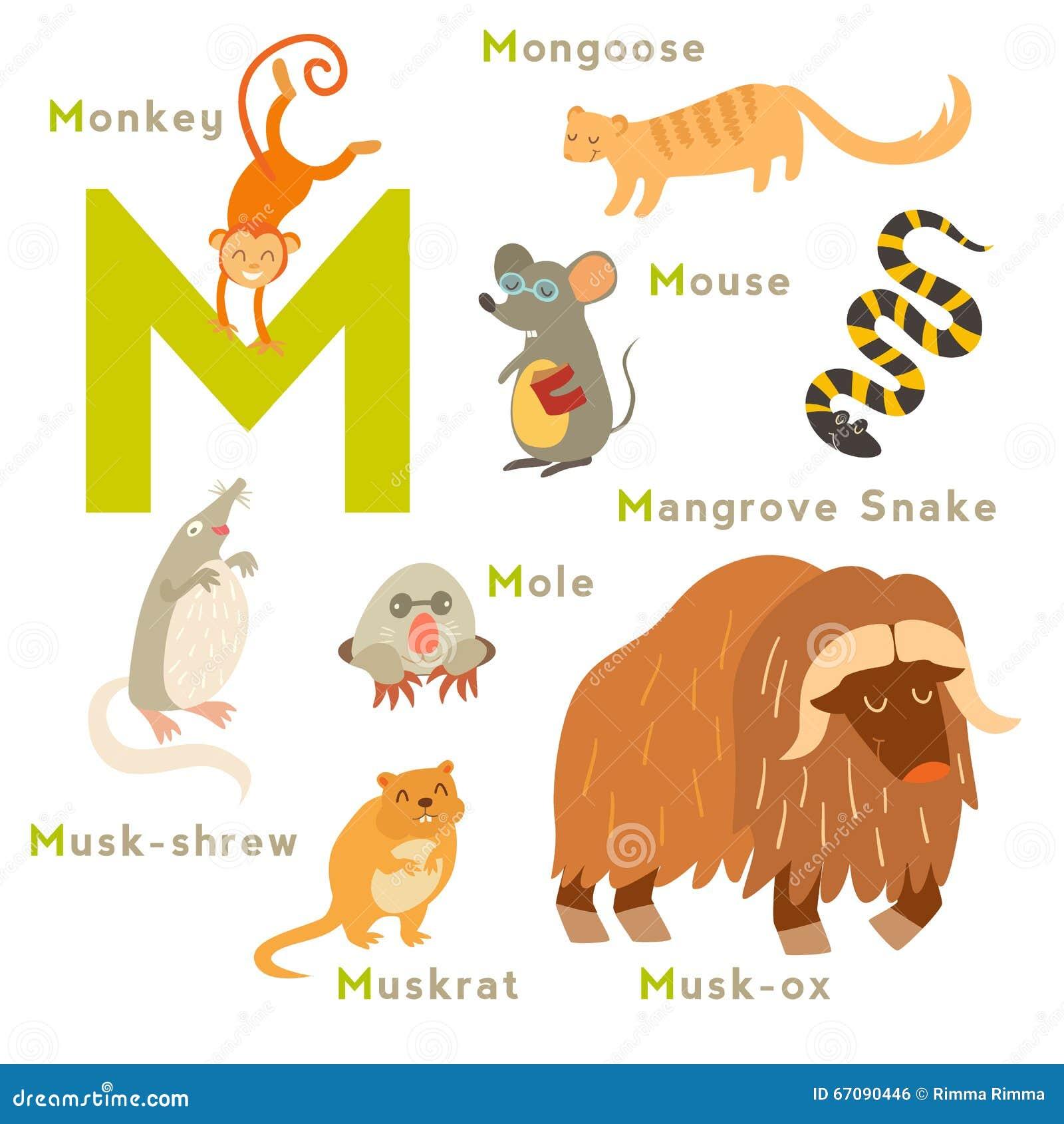 Nombre animal 10 letras Recibe ahora mismo las respuestas que necesitas!/5(27).