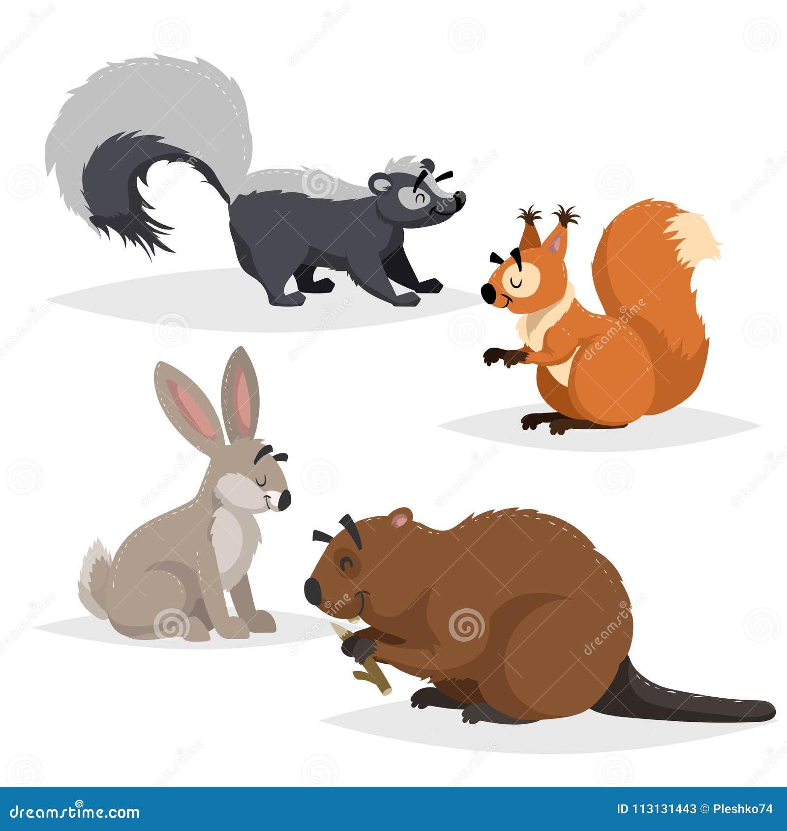 Animales del bosque fijados Mofeta, ardilla, liebres y castor Sonrisa feliz y caracteres alegres Ejemplos del parque zoológico de