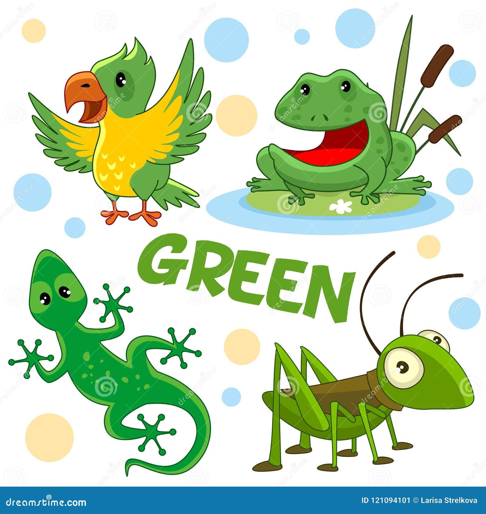 Animales Salvajes E Insectos Del Color Verde 2 Ilustración del ...