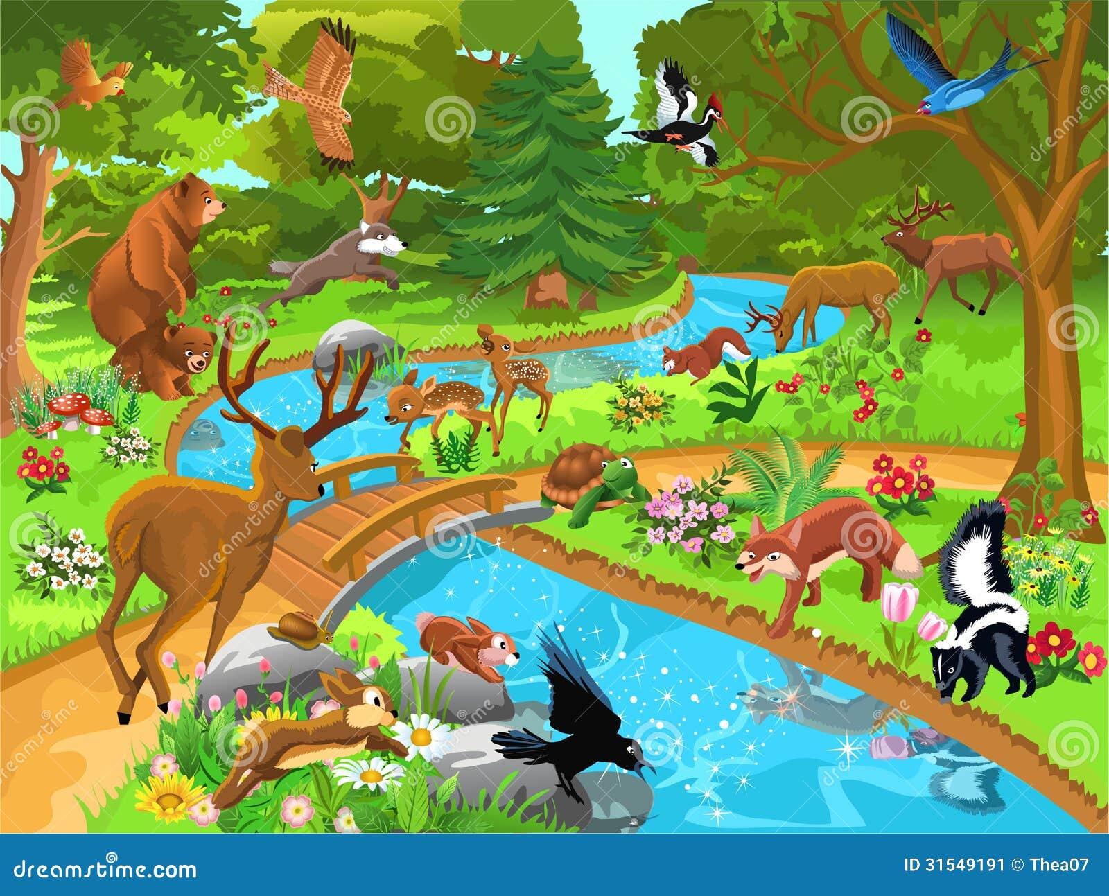 Animali della foresta che vengono a bere acqua