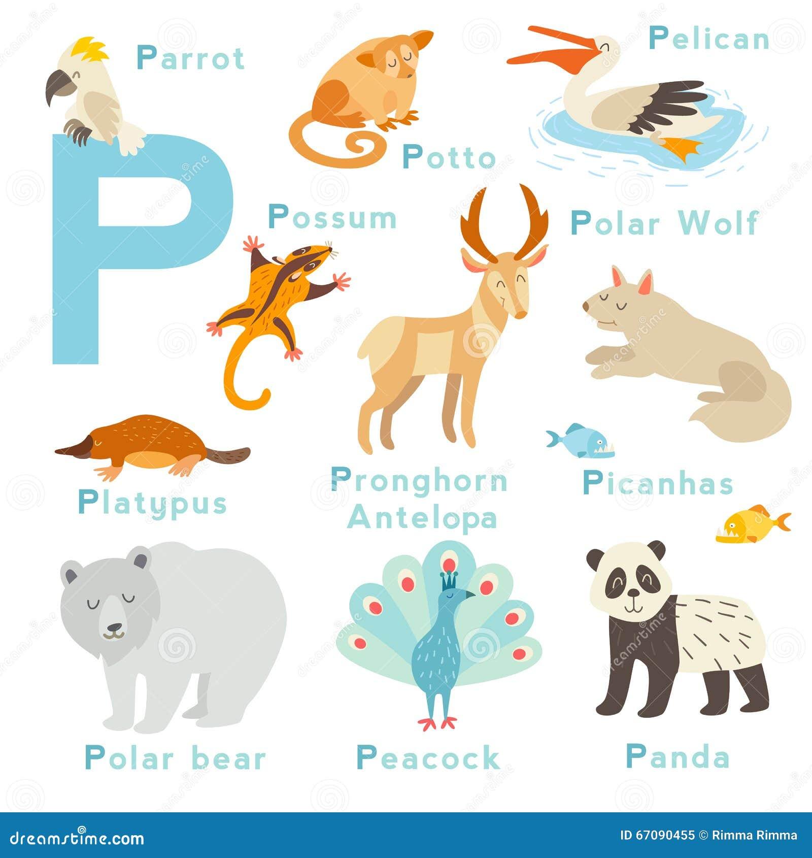 Lettere con animali images alfabeto