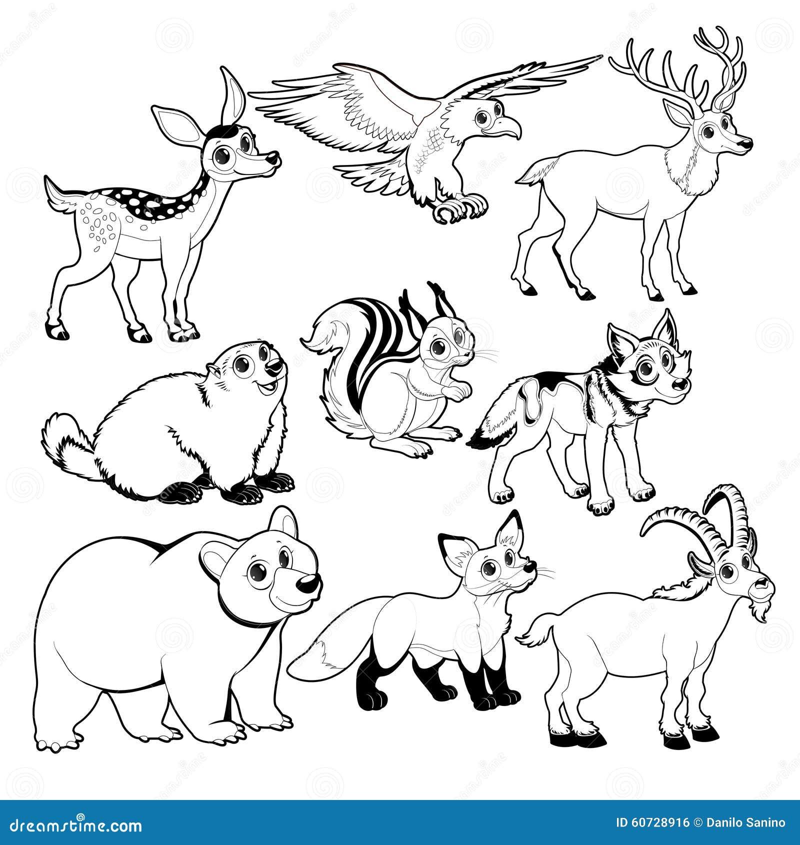 Animali della montagna e di legno in bianco e nero - Immagini da colorare delle montagne ...