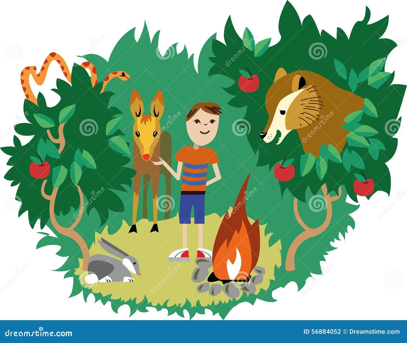 Animali selvatici ed essere umano