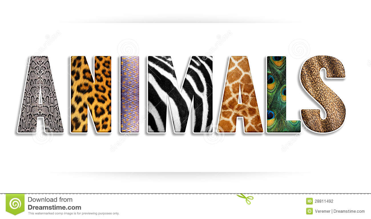 Letter Word From Animal
