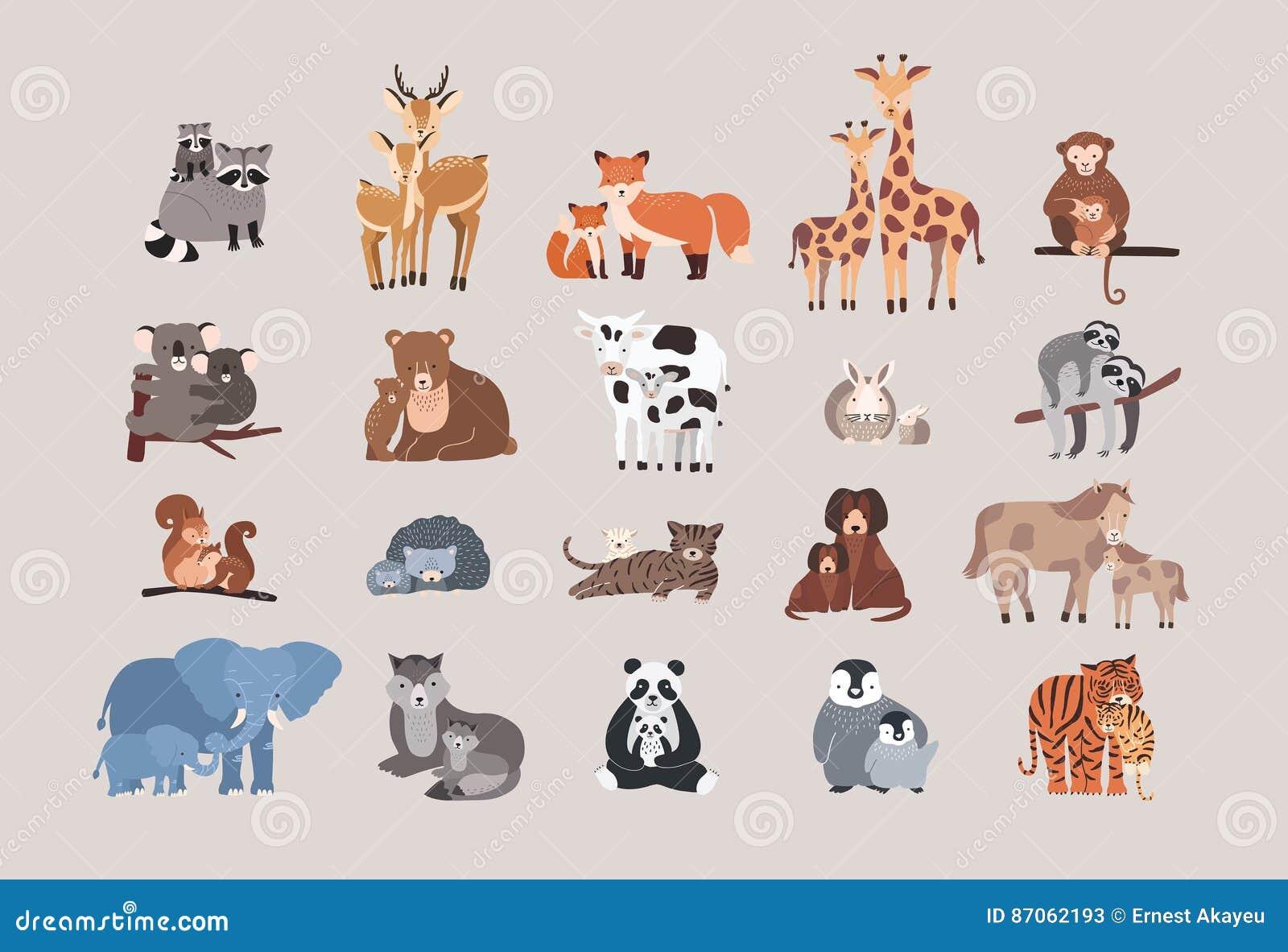 Animaux mignons avec des bébés réglés raton laveur, cerf commun, renard, girafe, singe, koala, ours, vache, lapin, paresse, écure