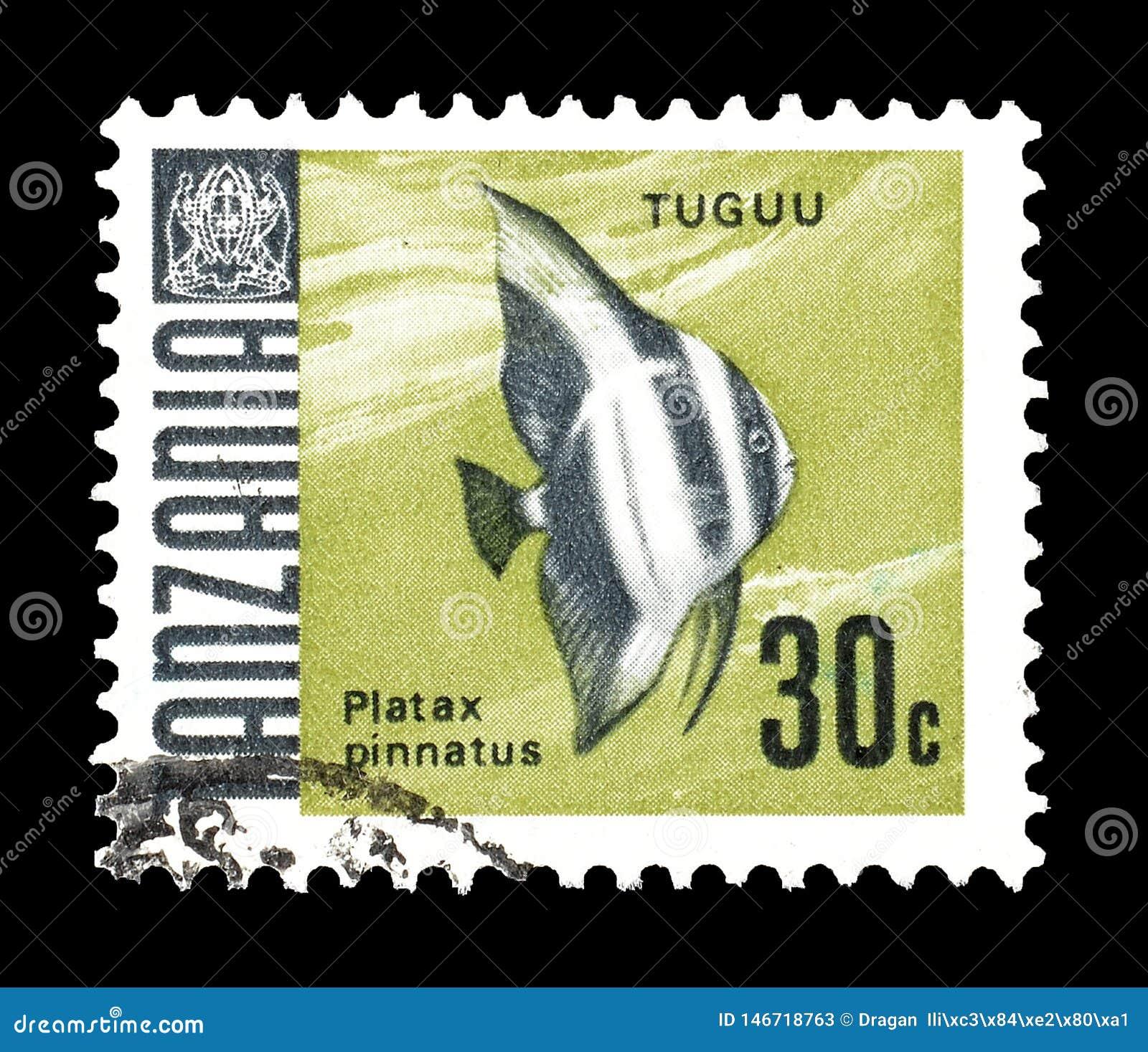 Animaux sauvages sur des timbres-poste