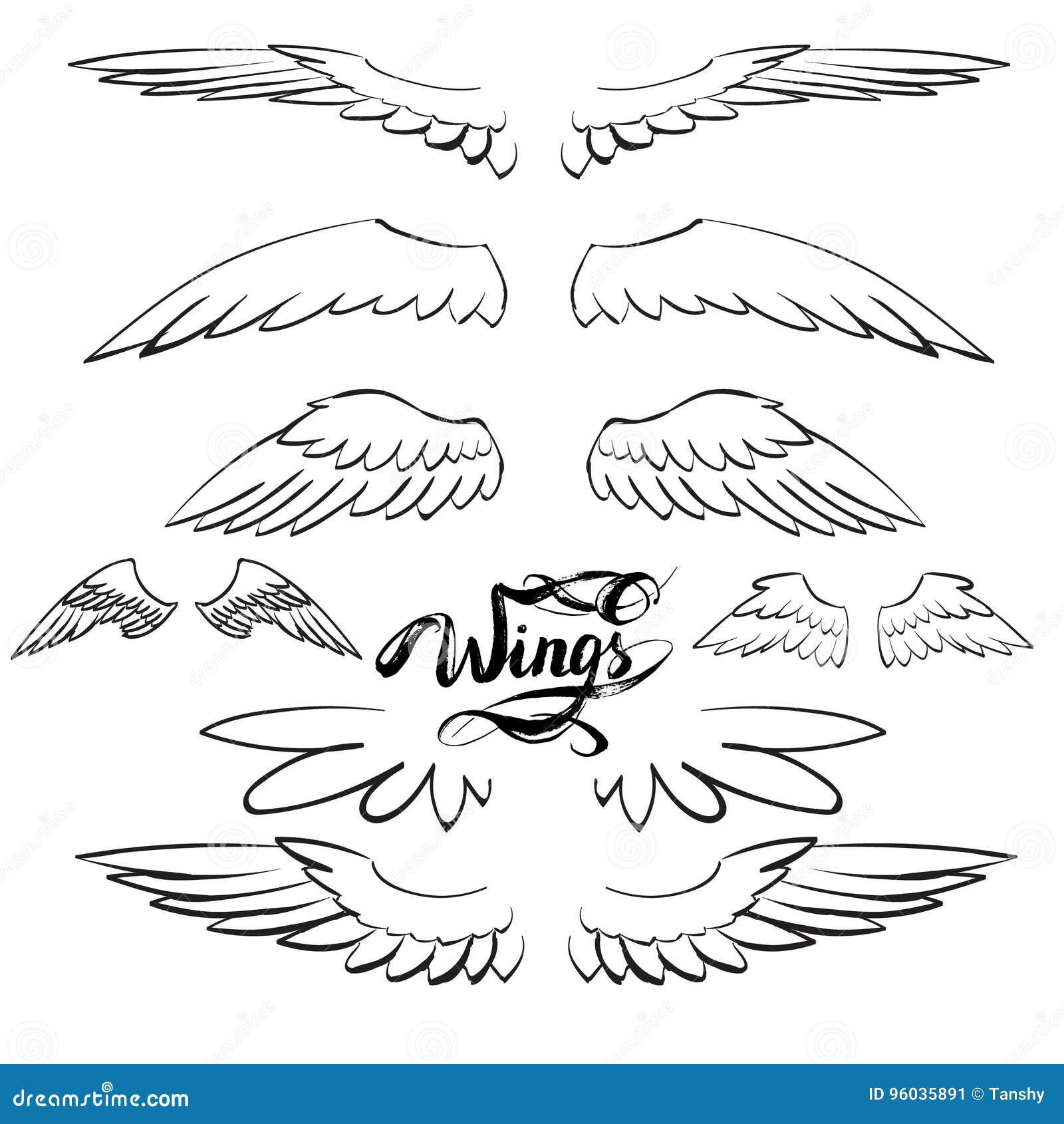 Anioł uskrzydla wektor, literowanie, rysuje