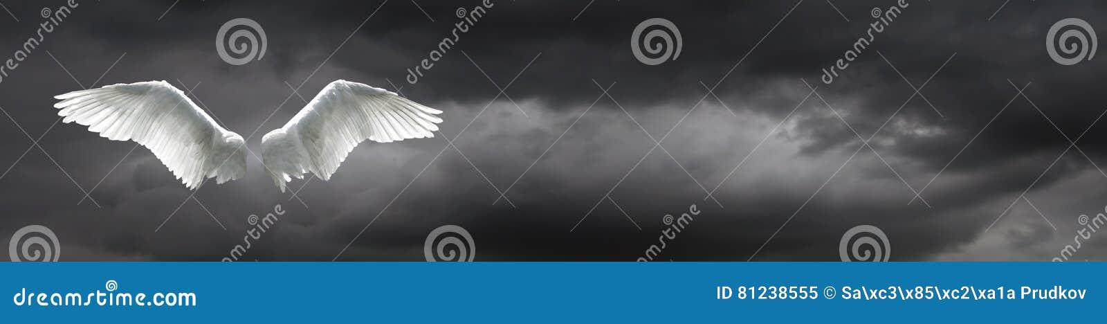 Anioł uskrzydla z burzowym nieba tłem