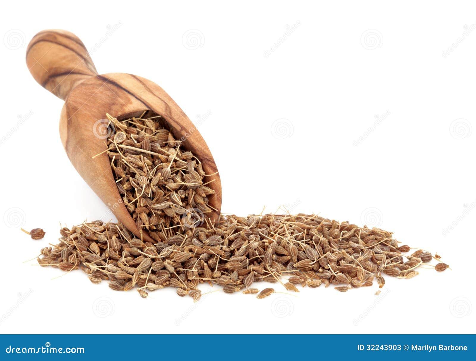 Aniseed pikantność