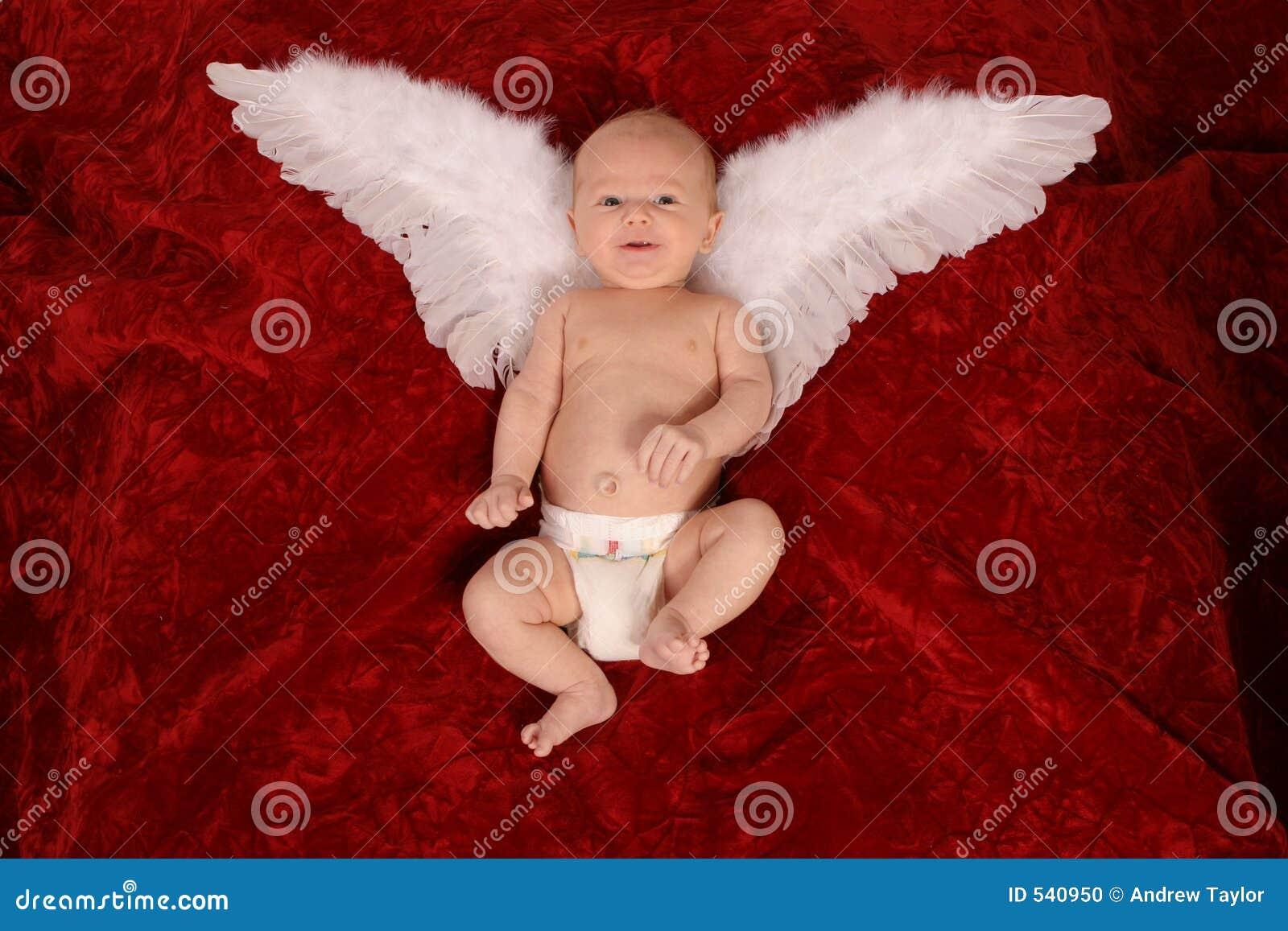 Anjo recém-nascido