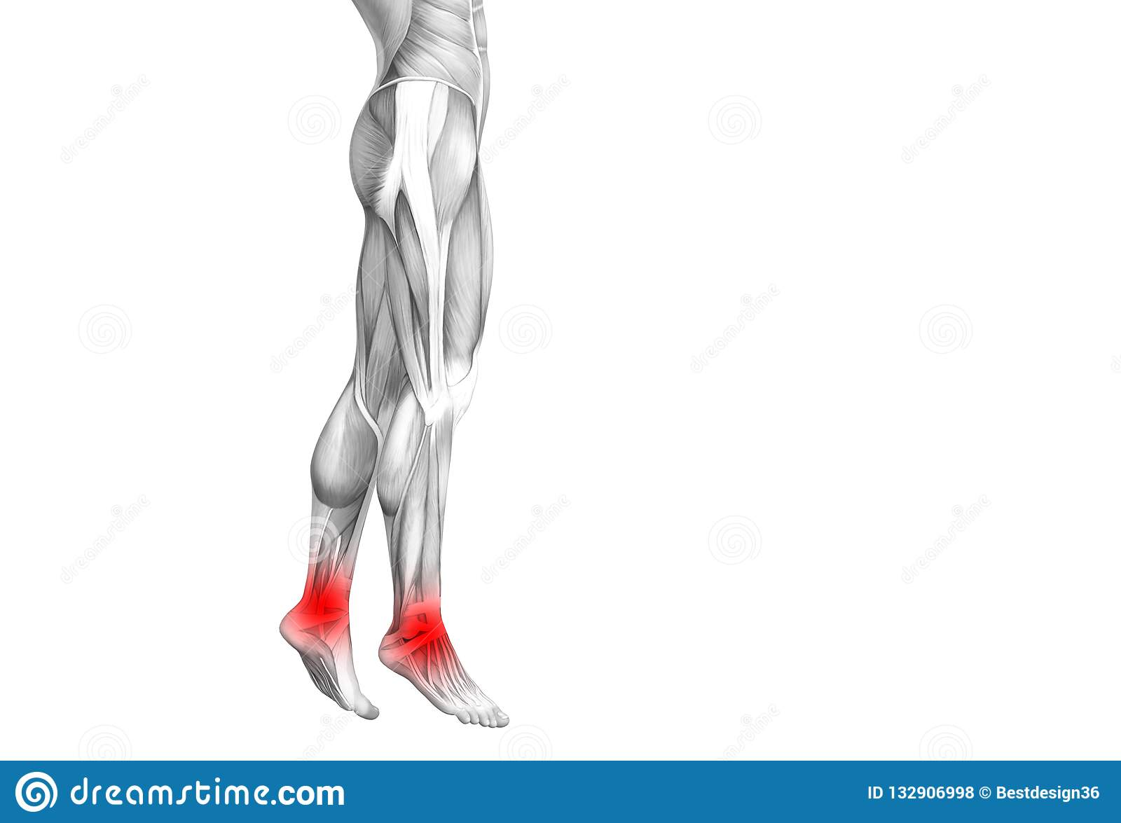Ankle Human Anatomy With Inflammation Joint Pain Stock Illustration