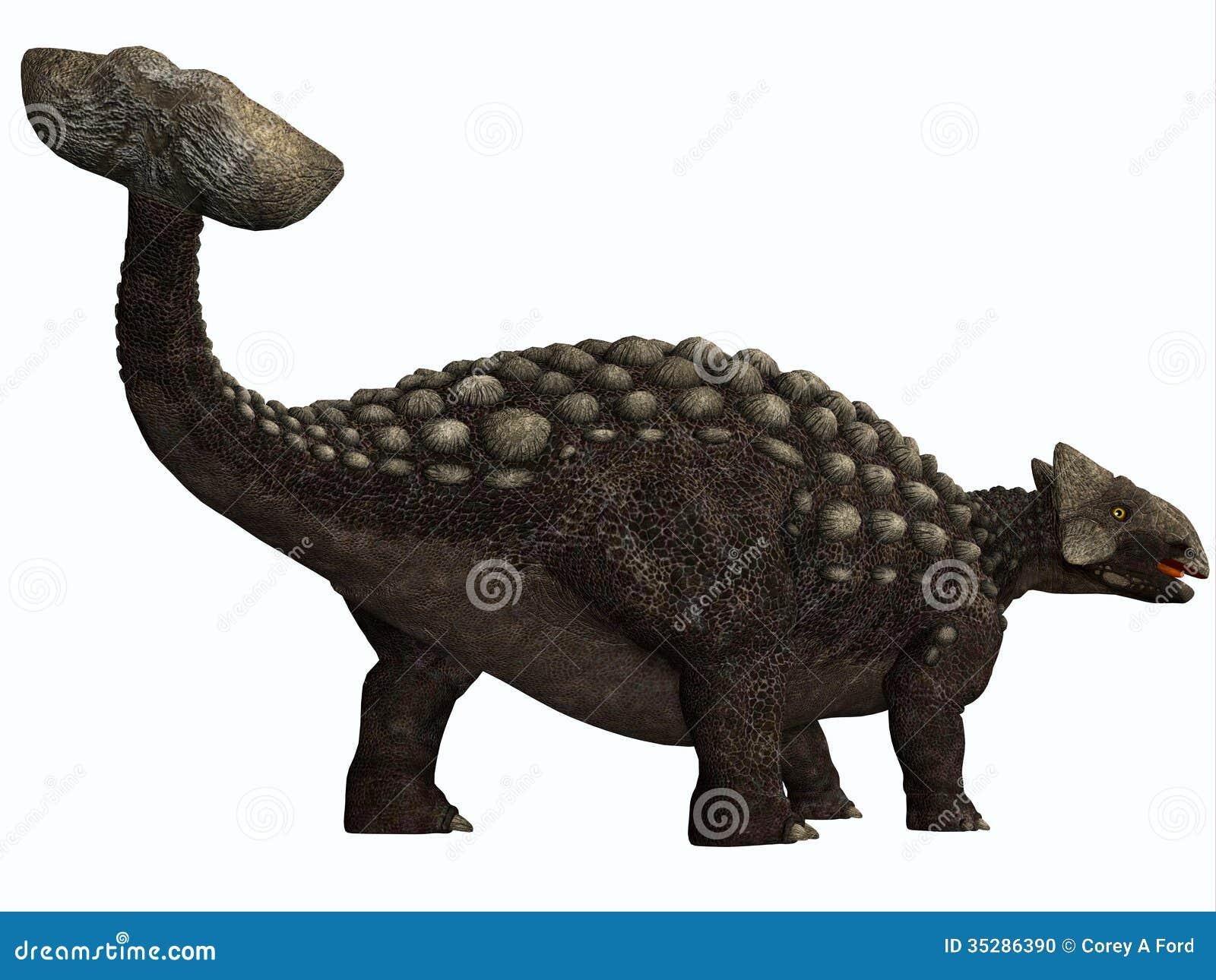 Ankylosaurus On White Stock Photo - Image: 35286390
