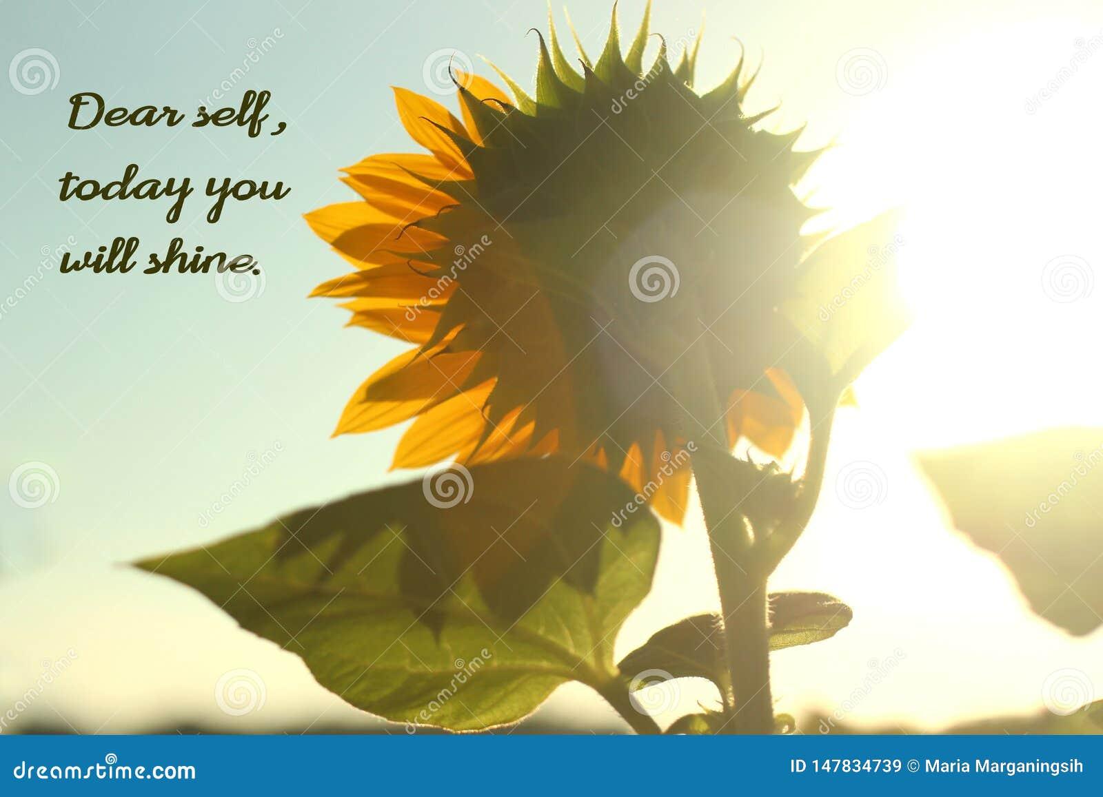 Anmärkningen till den kära själven för själven, i dag ska du skina