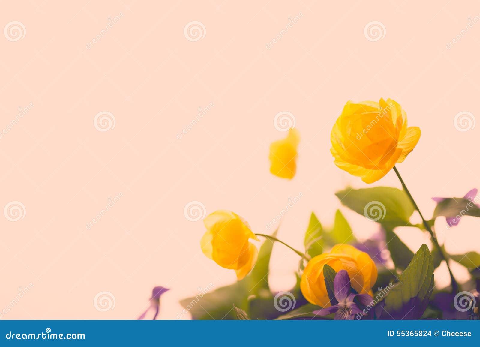 Annata del fiore e bello gialli