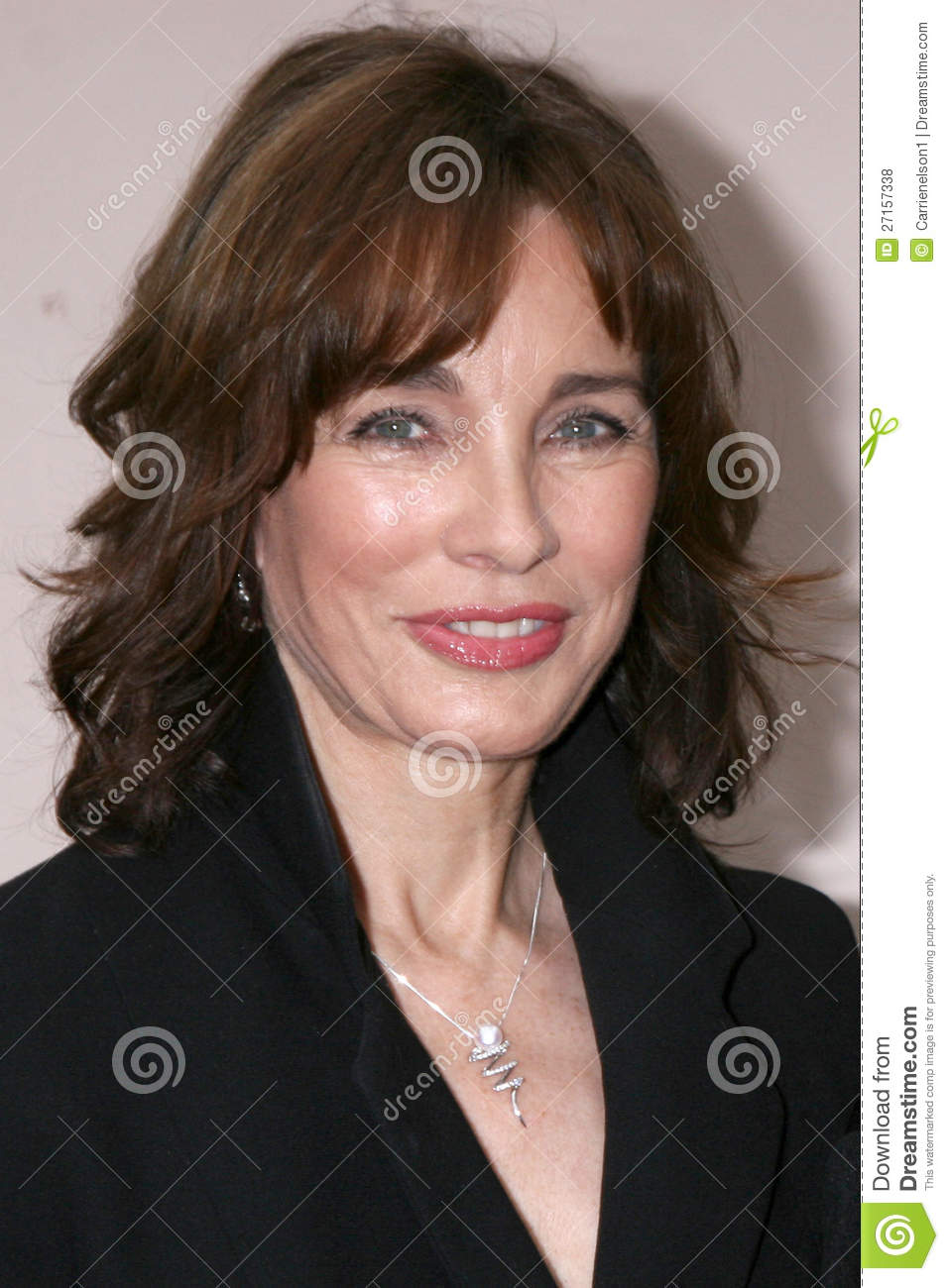 anne archer young