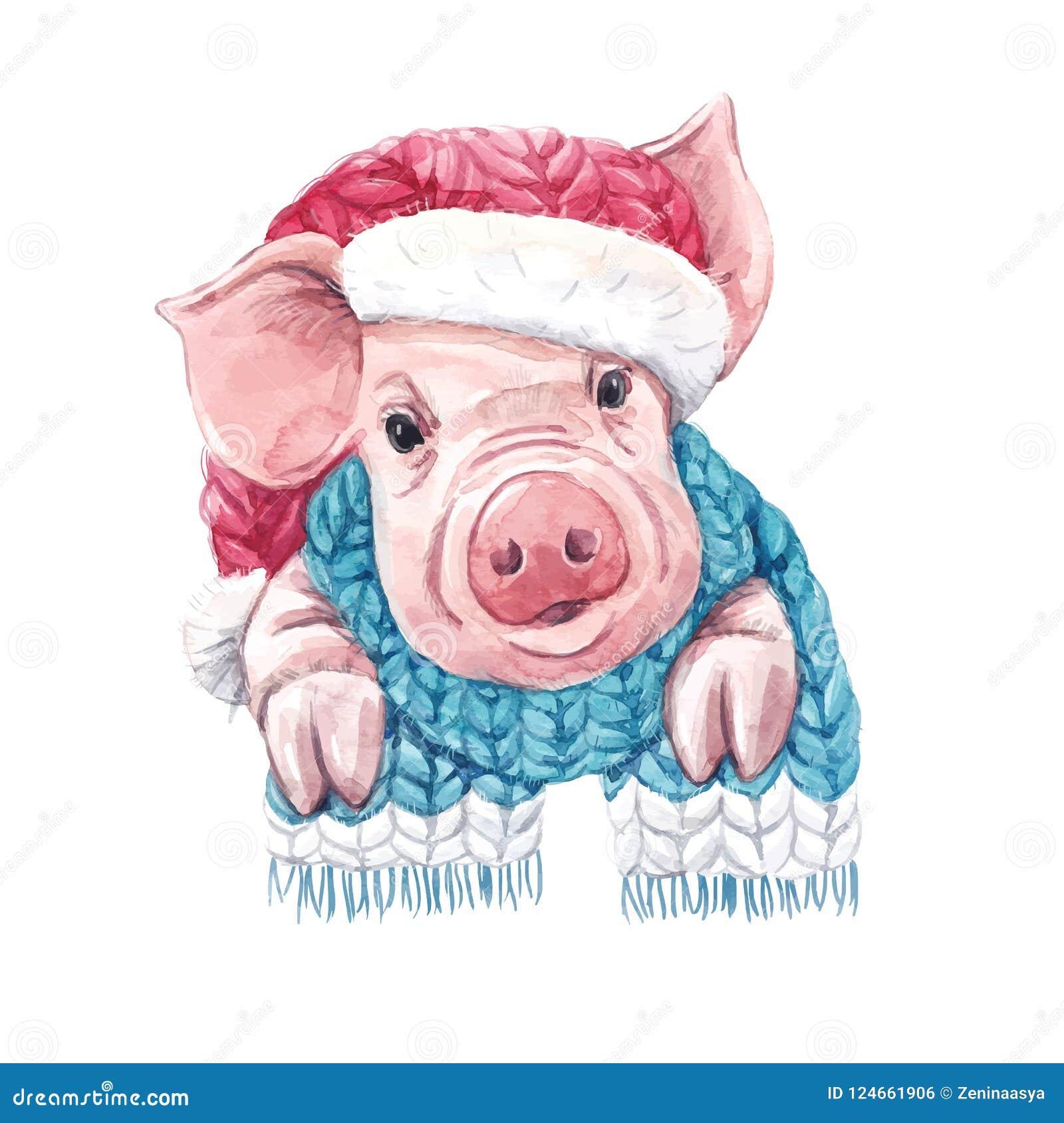2019 anni del vettore del maiale