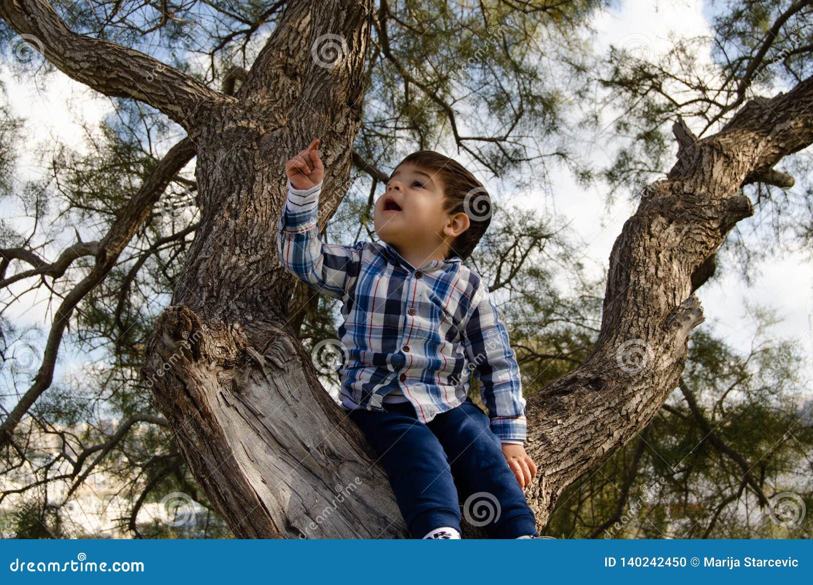 2 anni svegli del ragazzo vestito in camicia che si siede sull albero, sporco intorno alla bocca