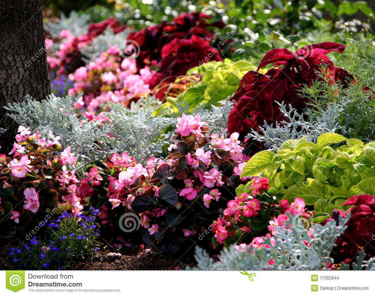 Annual summertime flowers bed