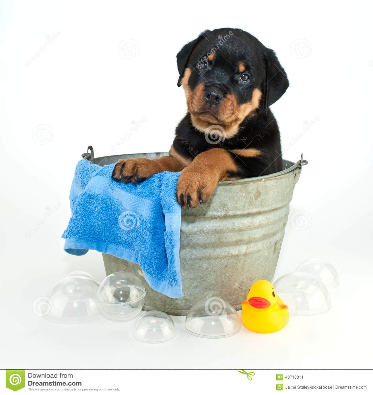 Another Bath Stock Photo Image 48713311