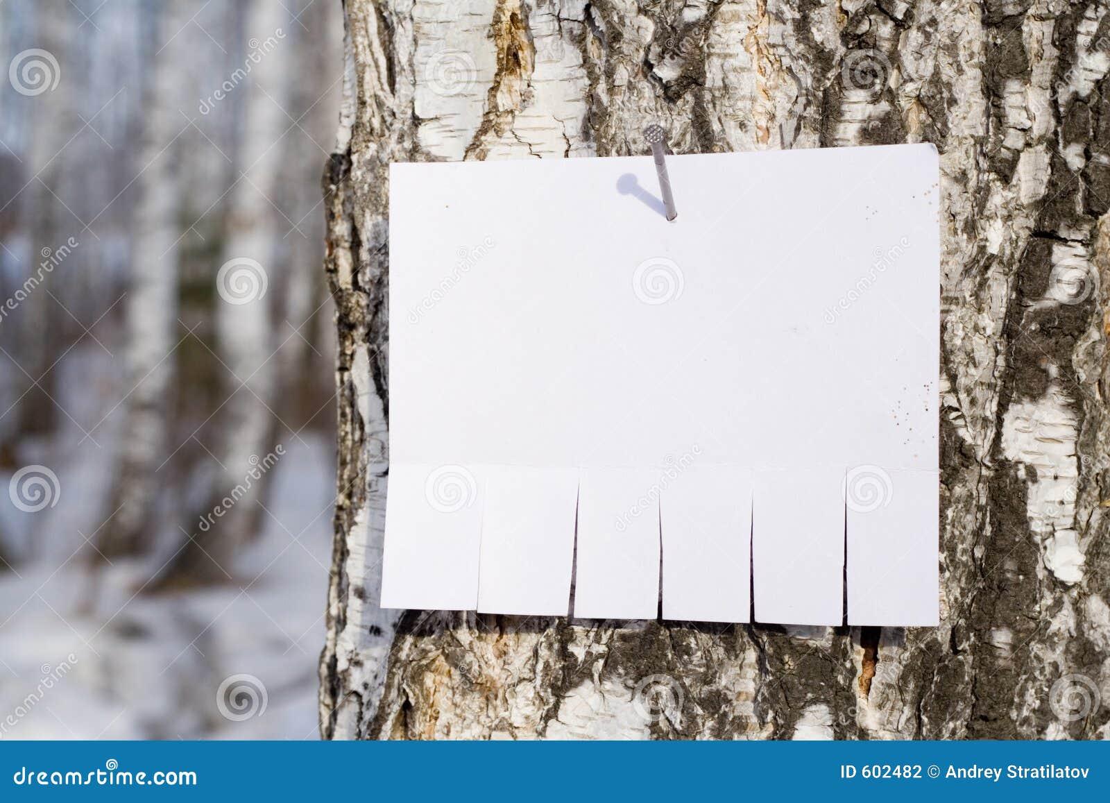 Ansage auf Baum