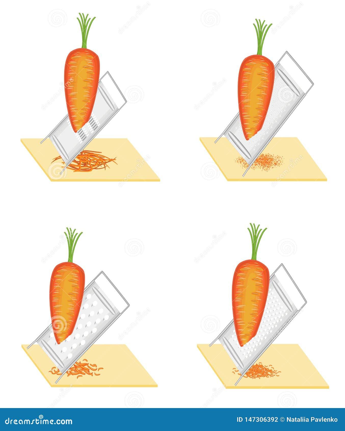 Ansammlung Reife sch?ne Karotten Gemüse reibt zur Reibe Vorbereitung der geschmackvollen, gesunden Nahrung Set vektorabbildungen
