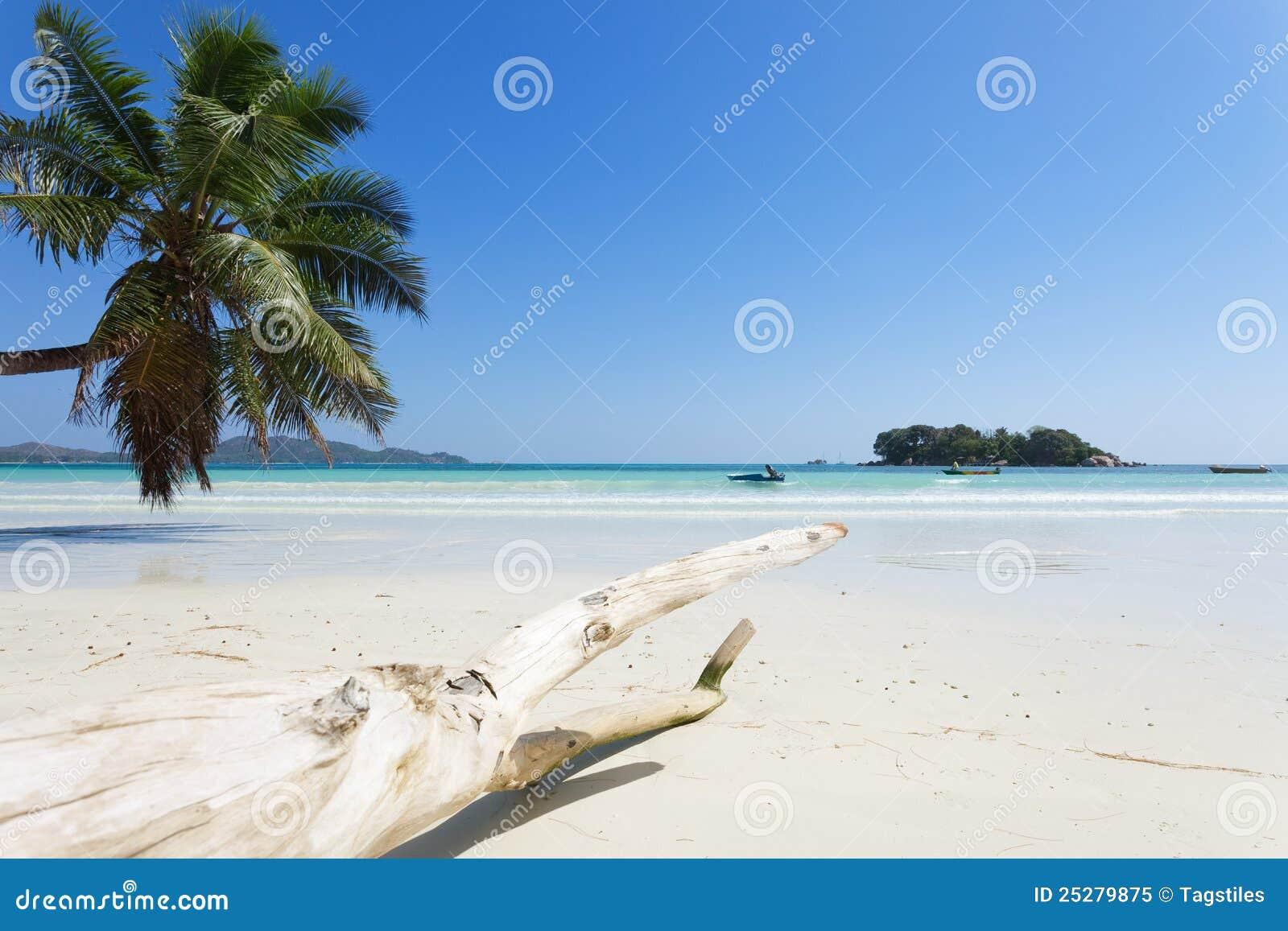Download Anse Volbert, Seychellen stockbild. Bild von paradies - 25279875