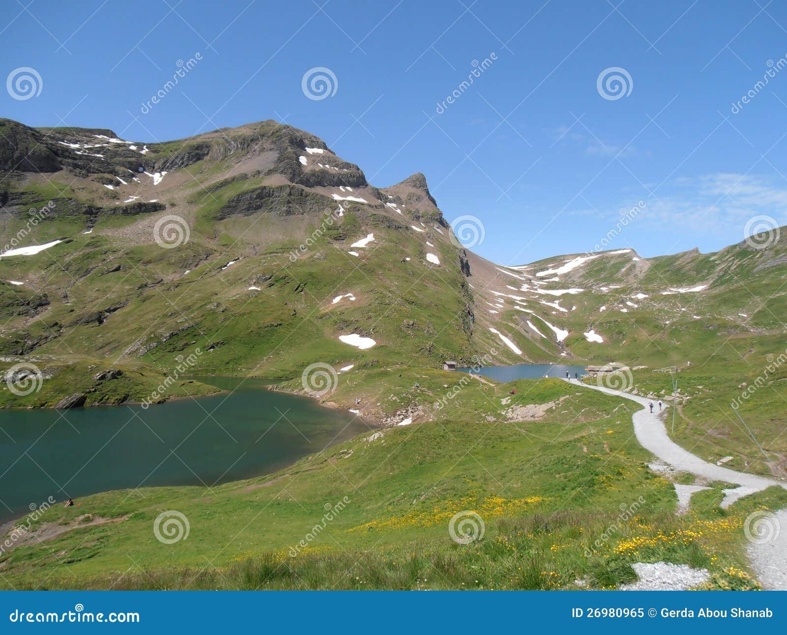 Ansicht über Bachalpsee und Faulhorn die Schweiz