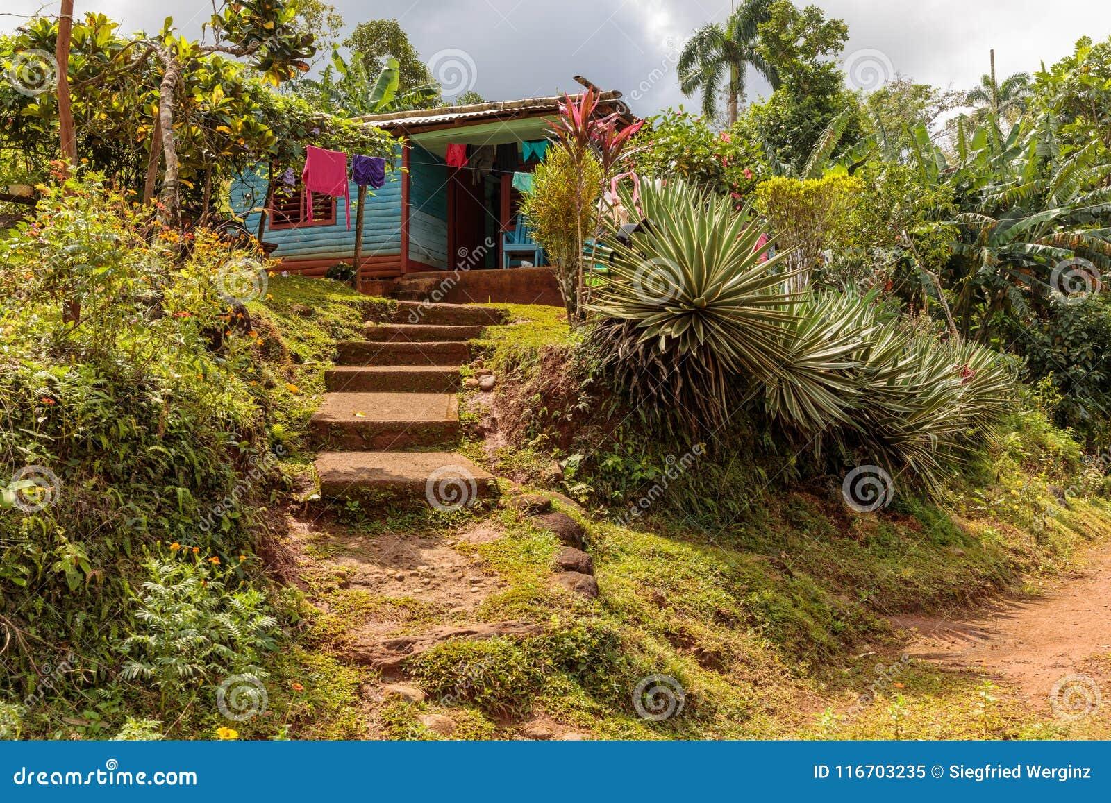 Ansicht über ein Wohnhaus von der Straße in Nationalpark alejandro Des Humboldt nahe baracoa Kuba