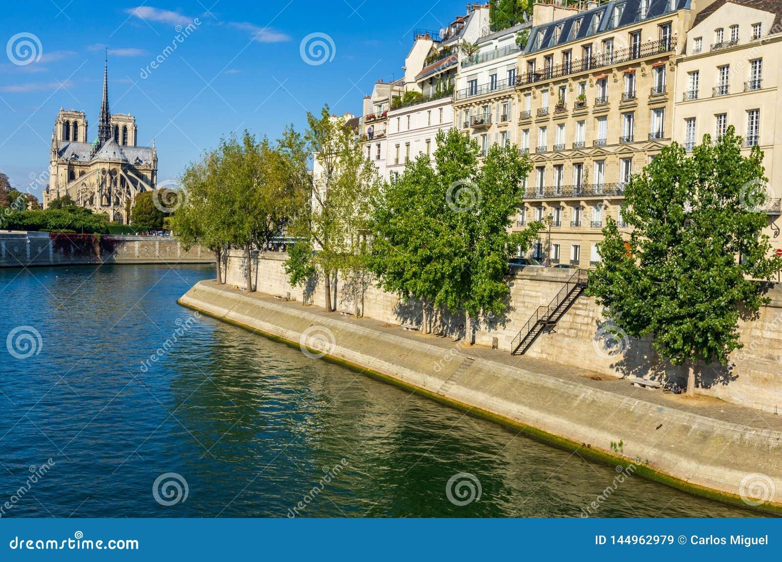Ansicht der Kathedrale von Notre Dame und von Fluss die Seine