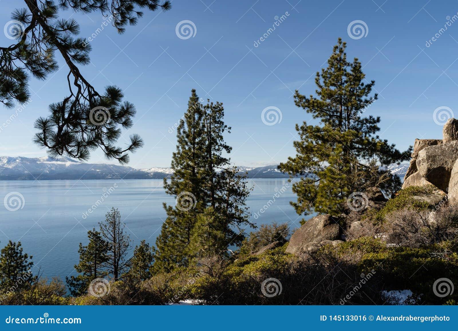 Ansicht der Natur um Lake Tahoe im Winter, Nevada, USA