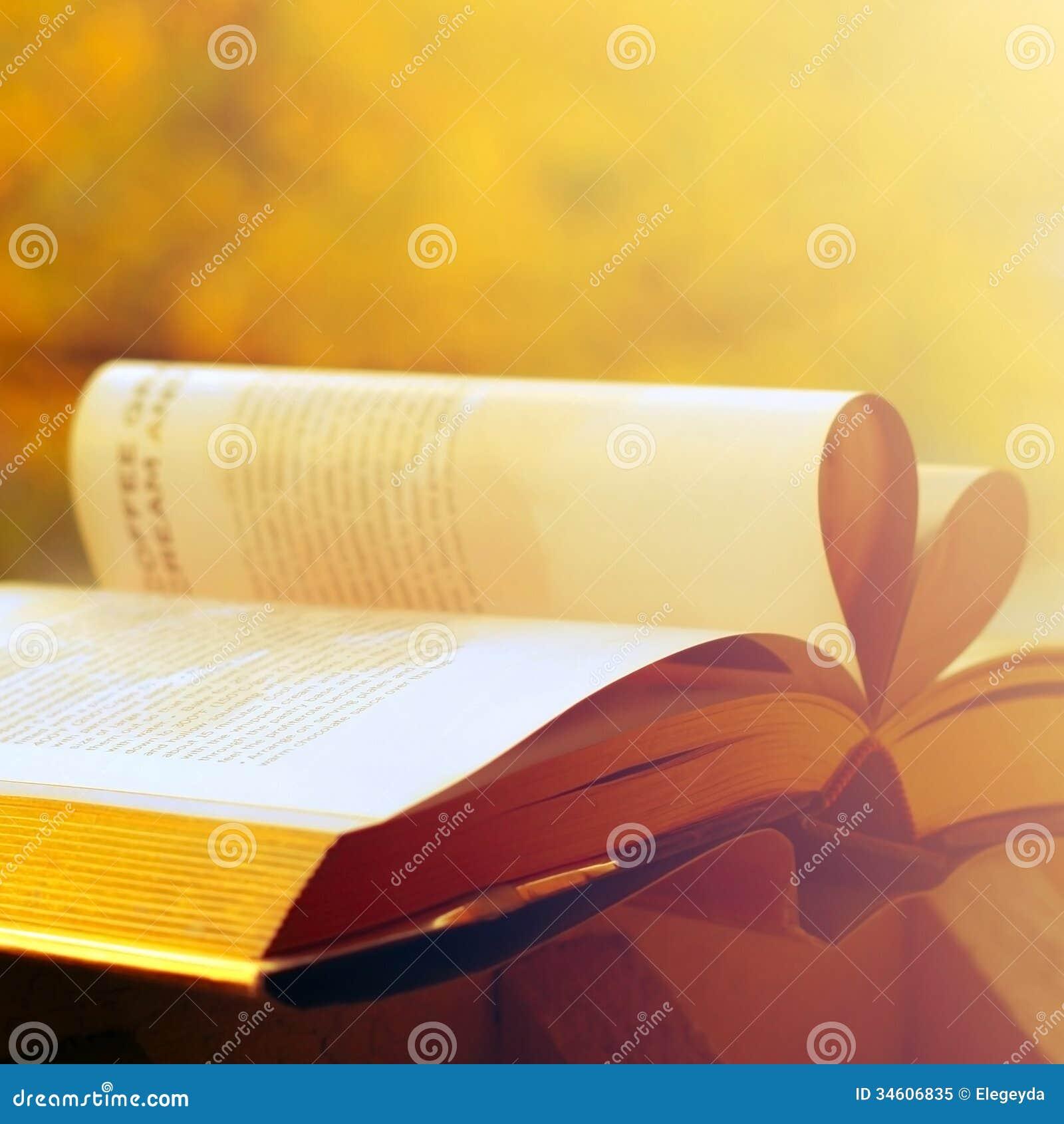 Ansicht des Buches
