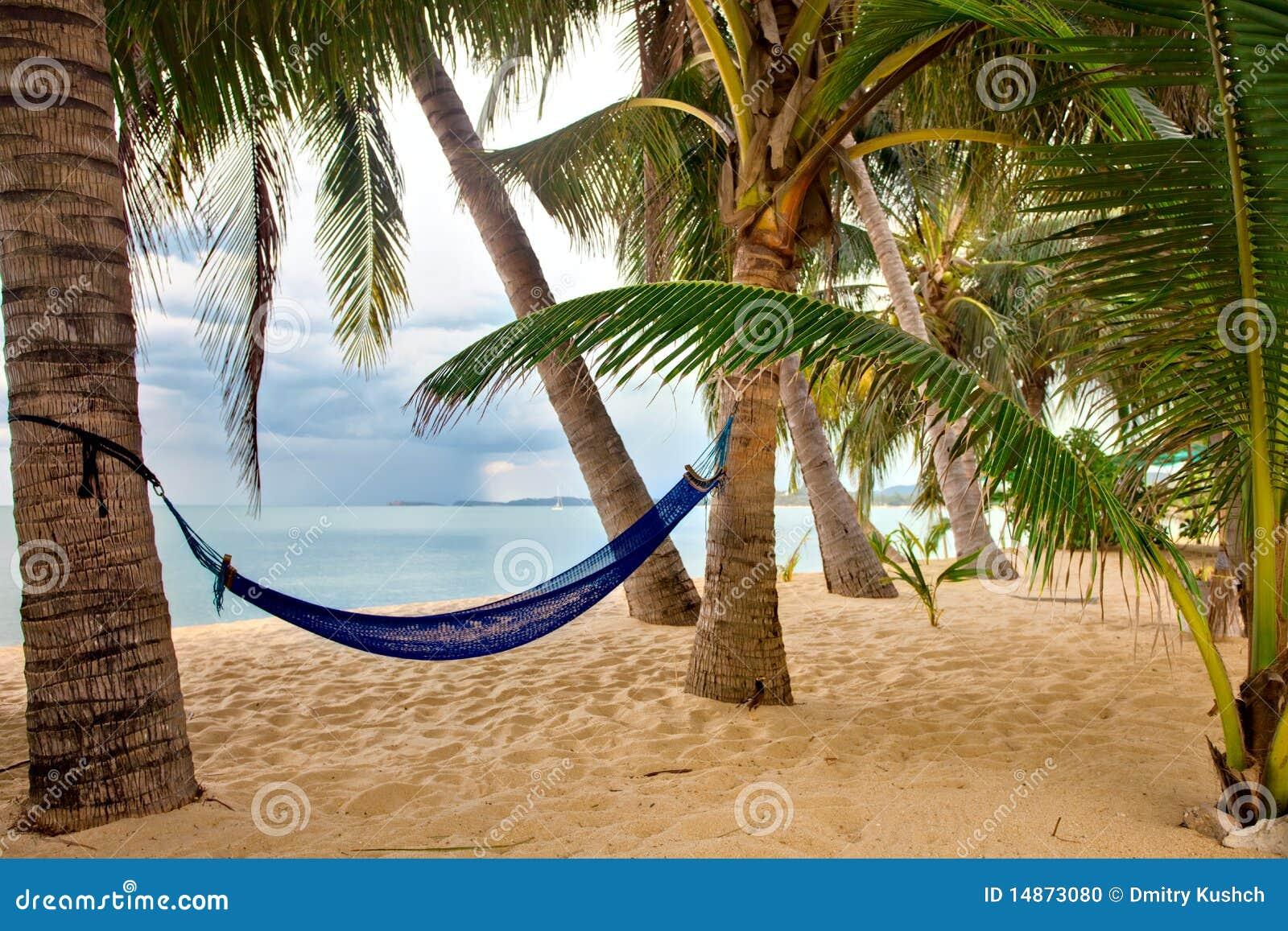 Ansicht des netten tropischen leeren Sandstrandes