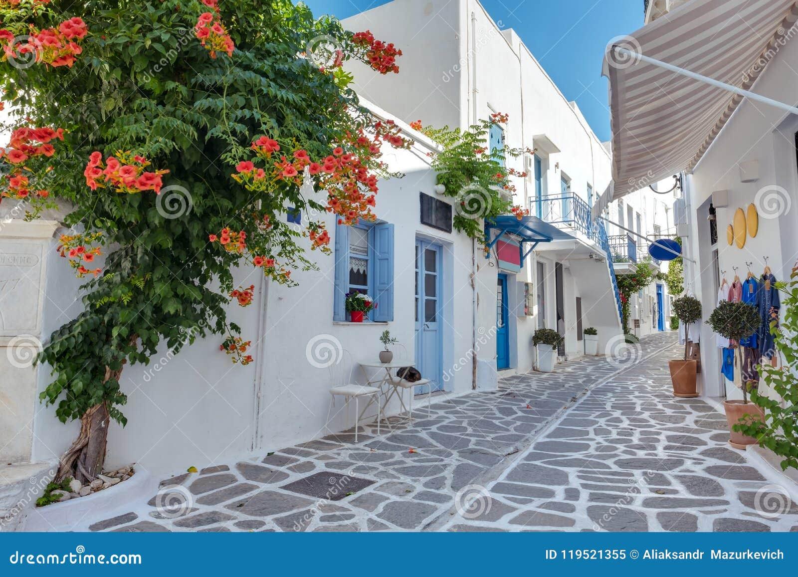 Ansicht einer typischen schmalen Straße in der alten Stadt von Parikia, Paros-Insel, die Kykladen