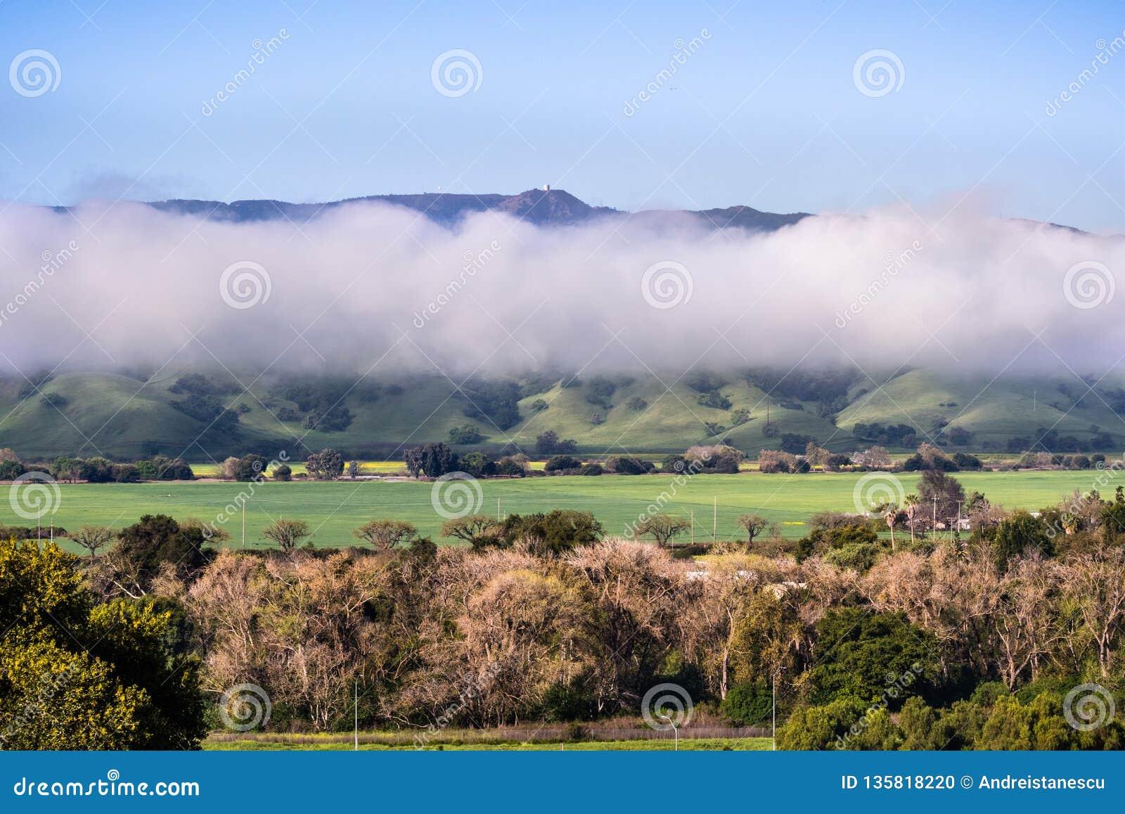 Ansicht in Richtung zur Spitze von Mt Umunhum und das ehemalige Radargebäude, steigend über eine Schicht Wolken; grüne Felder sic