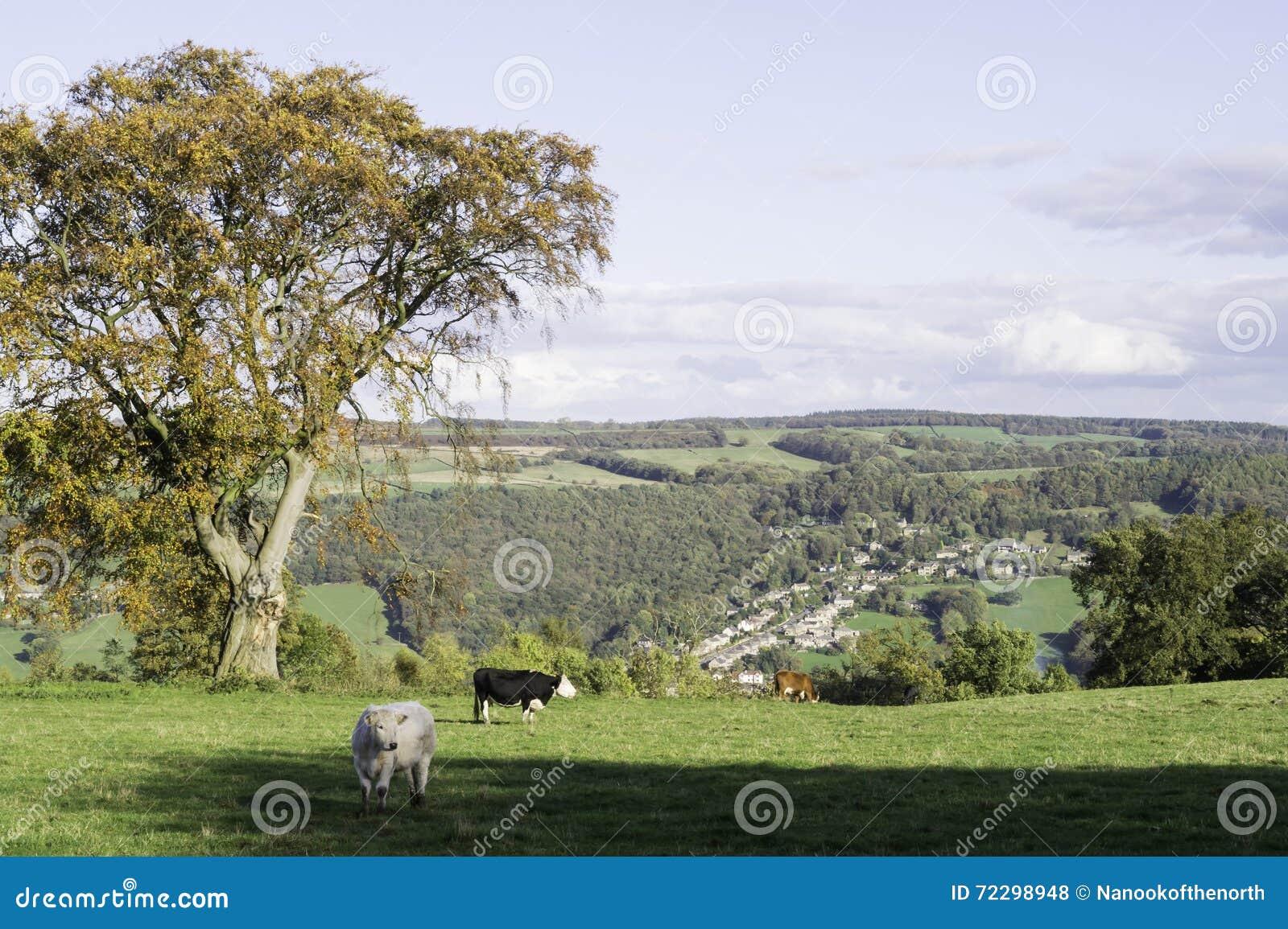 Ansicht von Dovedale von Stanton Moor